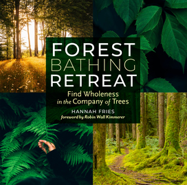 Forest Bathing Retreat - cover