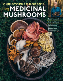 Christopher Hobbs's Medicinal Mushrooms: The Essential Guide - cover