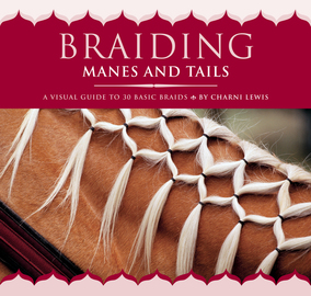 Braiding Manes and Tails - cover
