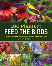 100 Plants to Feed the Birds - cover