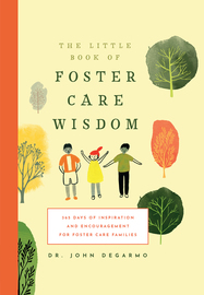 The Little Book of Foster Care Wisdom - cover