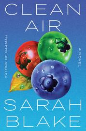 Clean Air - cover