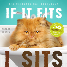 If It Fits, I Sits - cover