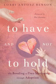 To Have and Not to Hold - cover