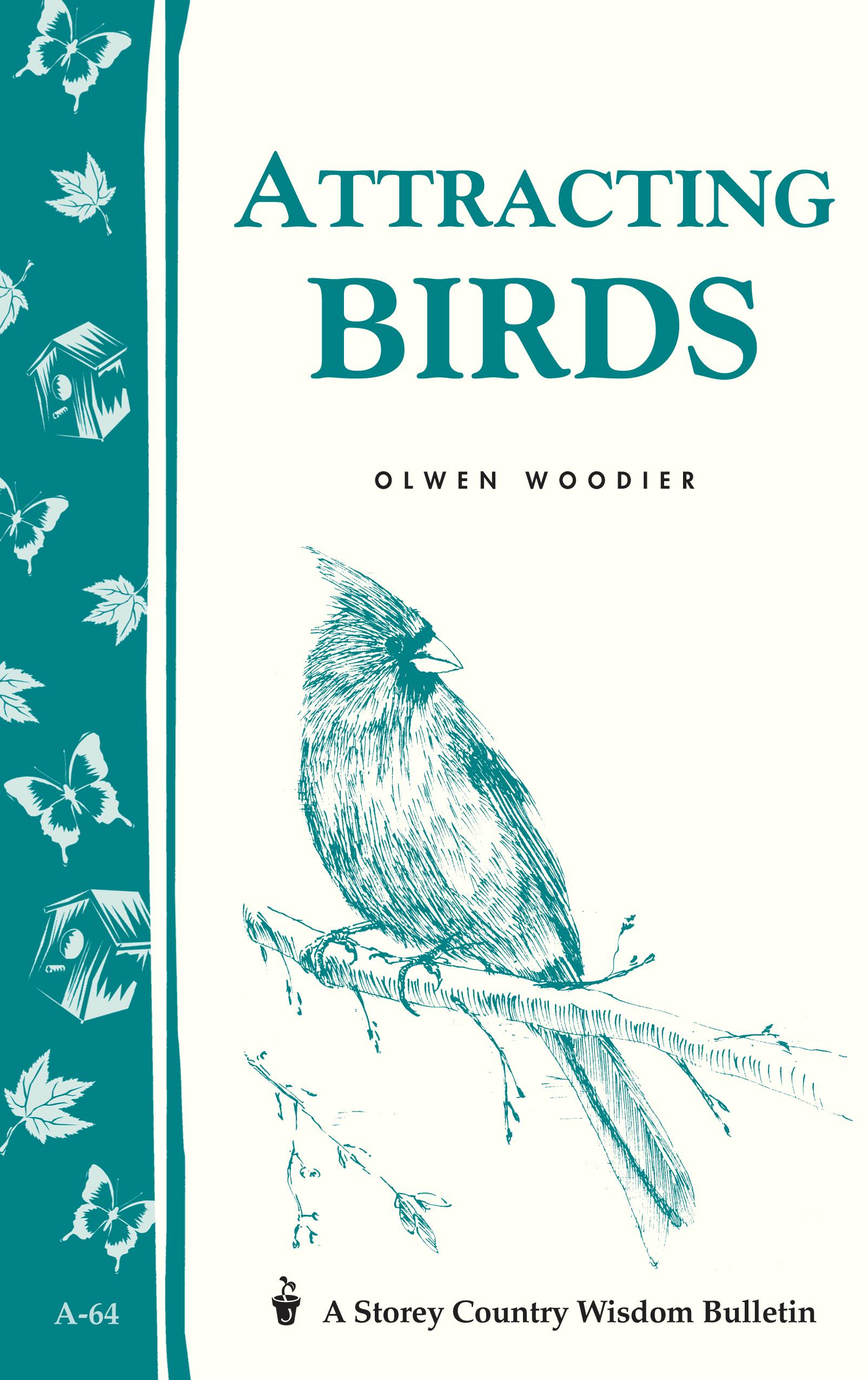 Attracting Birds Storey Country Wisdom Bulletin A-64 - Olwen Woodier