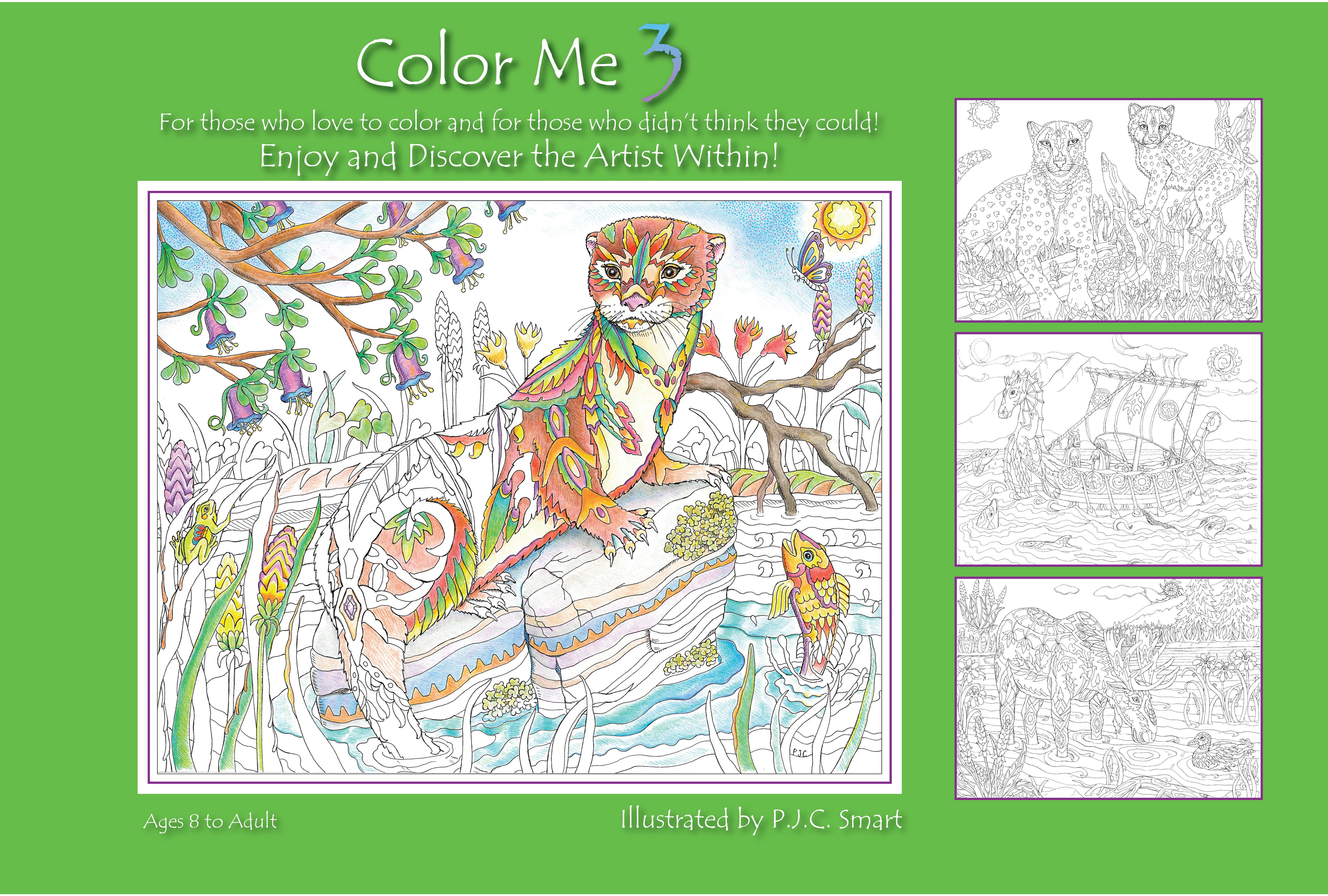 - Color Me Your Way 3 - Workman Publishing