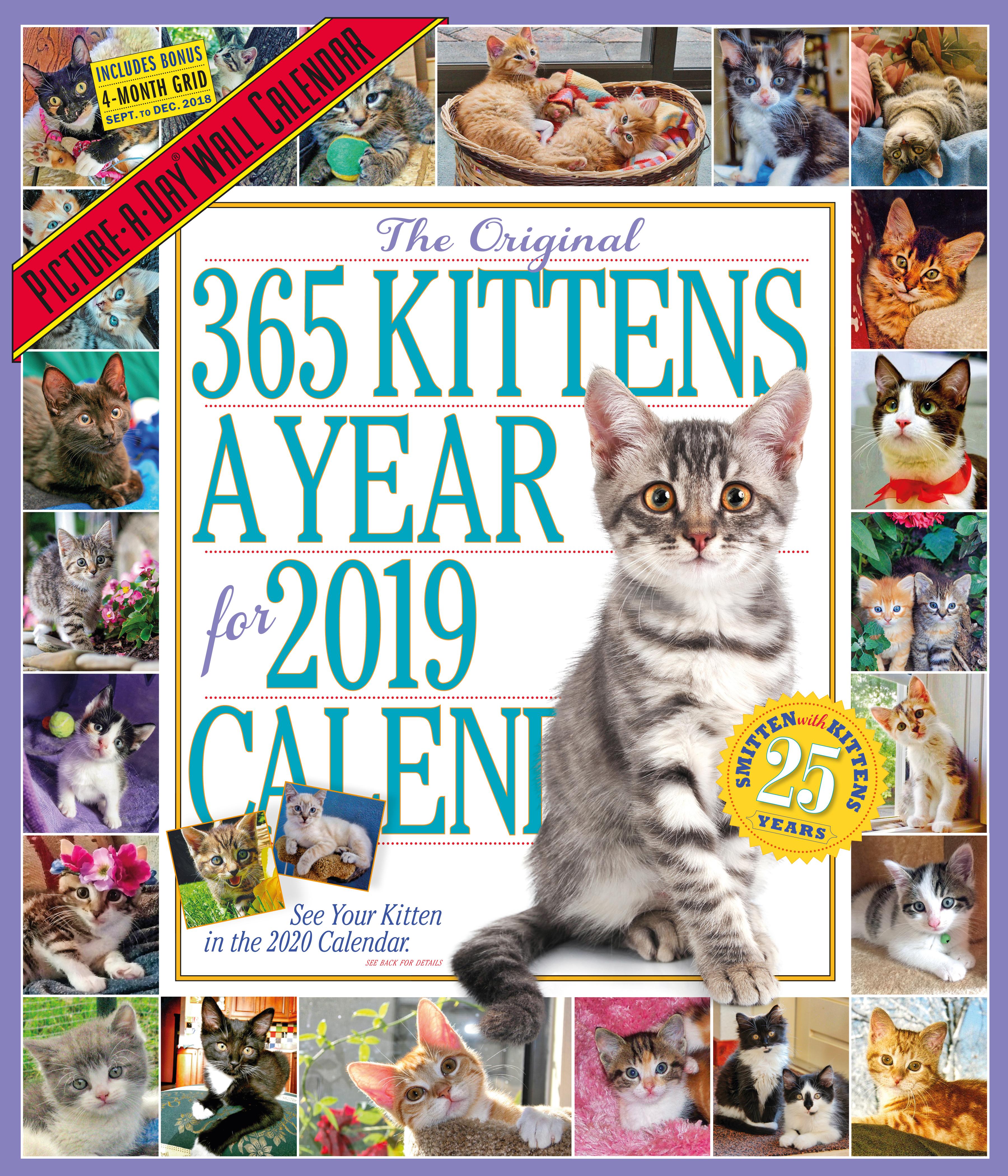 Year Calendar Look : Year perpetual calendar