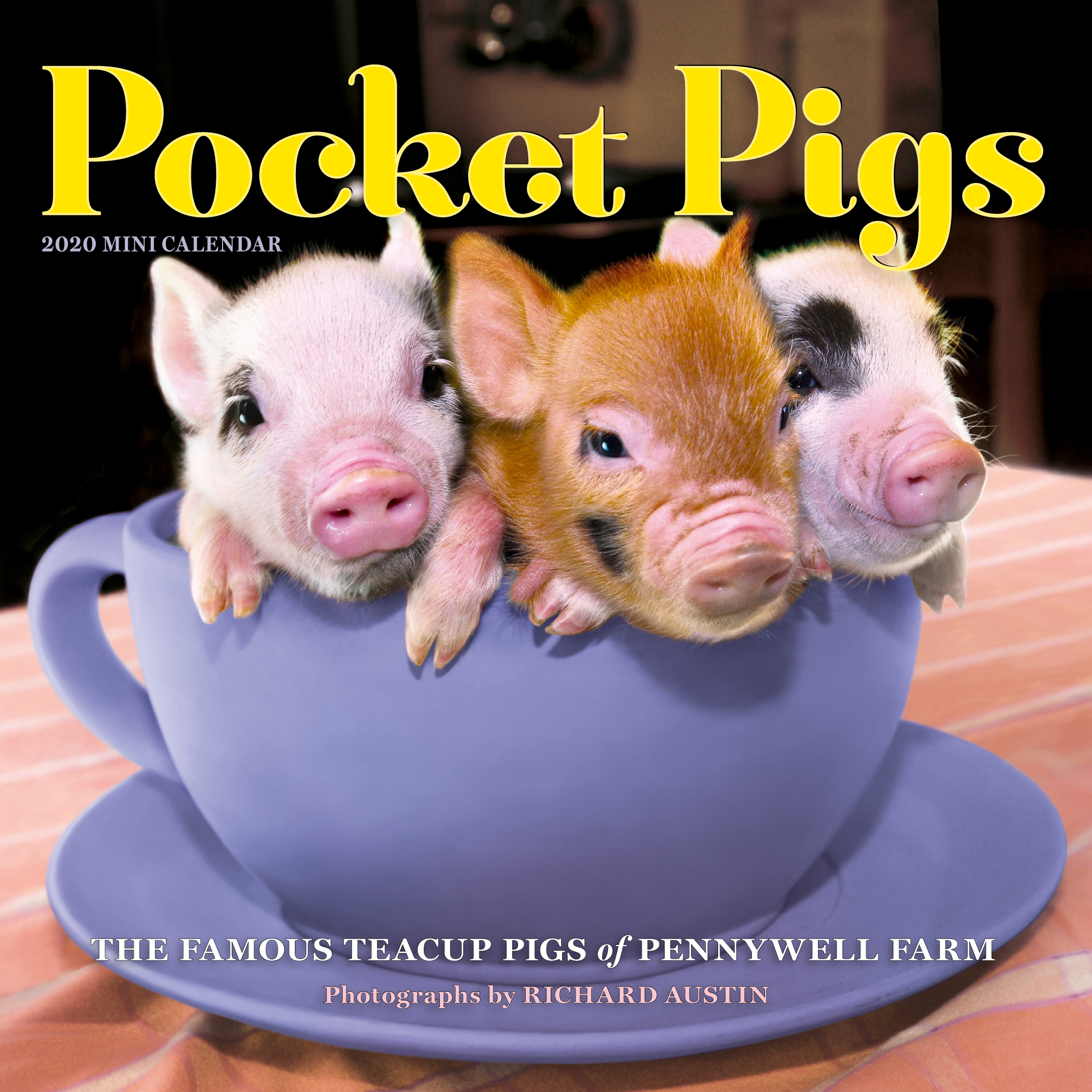 Pig Calendar 2020 Pocket Pigs Mini Wall Calendar 2020   Workman Publishing