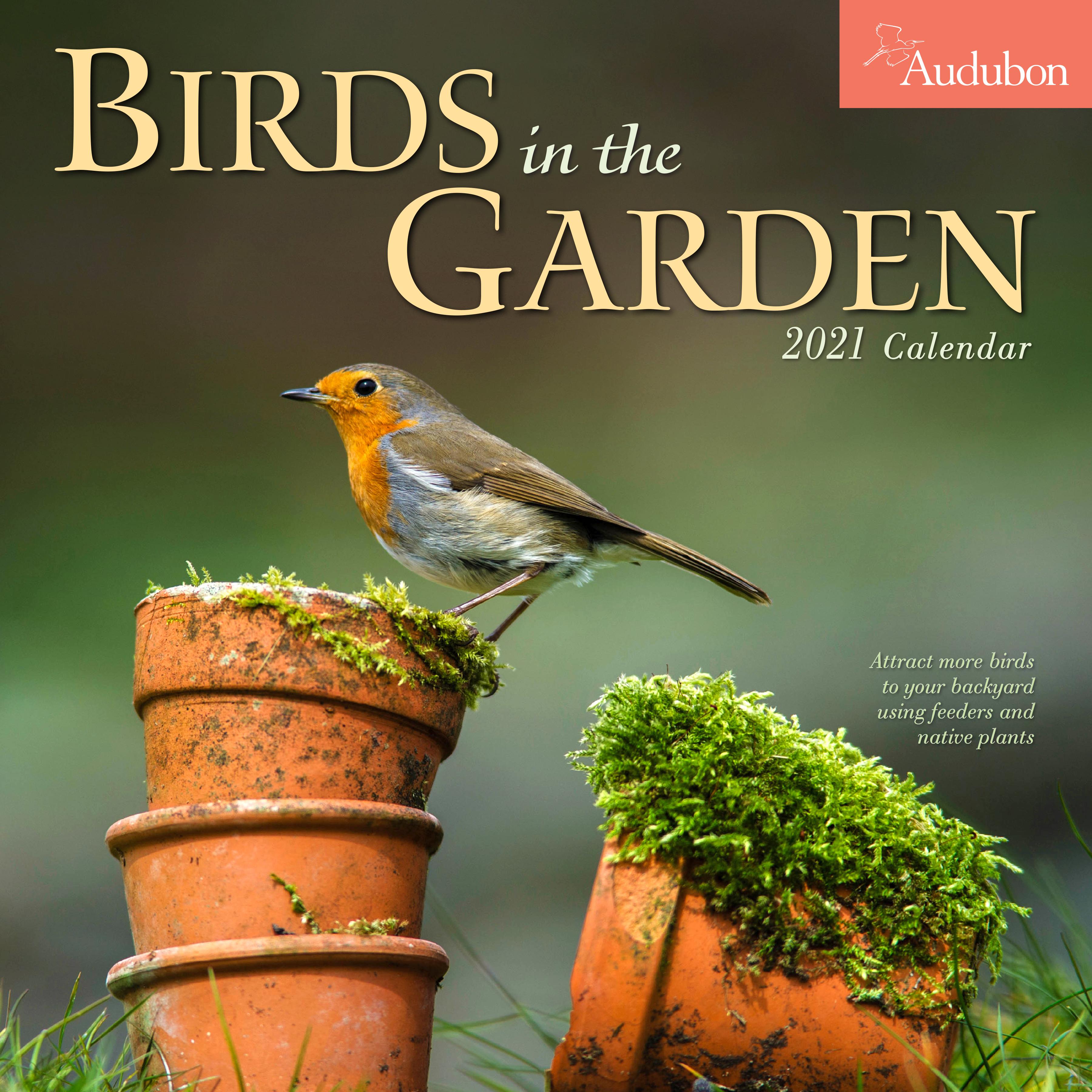 Audubon Bird Calendar 2021 Audubon Birds in the Garden Wall Calendar 2021   Workman Publishing