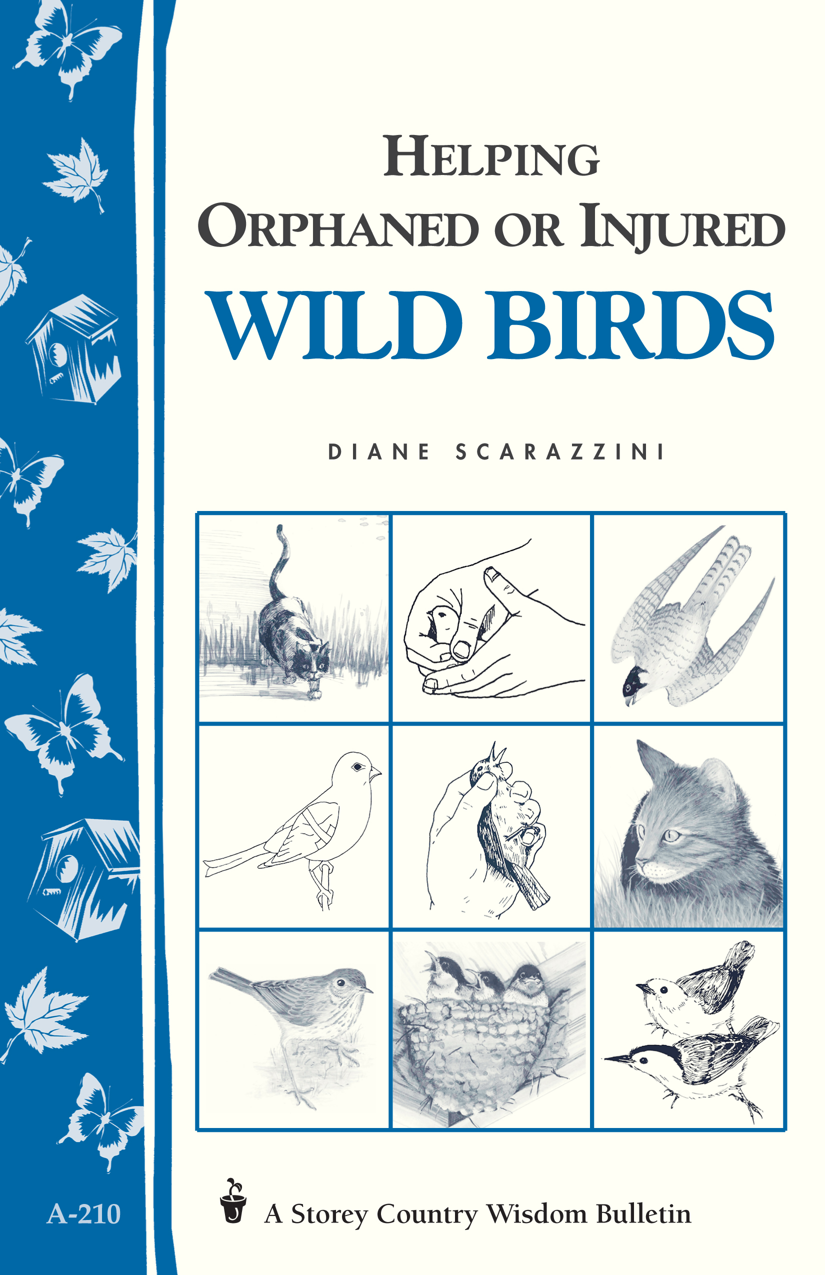 Helping Orphaned or Injured Wild Birds Storey's Country Wisdom Bulletin A-210 - Diane Scarazzini