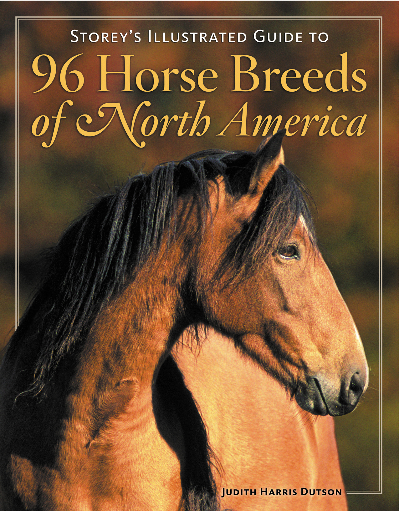 Storey's Illustrated Guide to 96 Horse Breeds of North America  - Judith Dutson