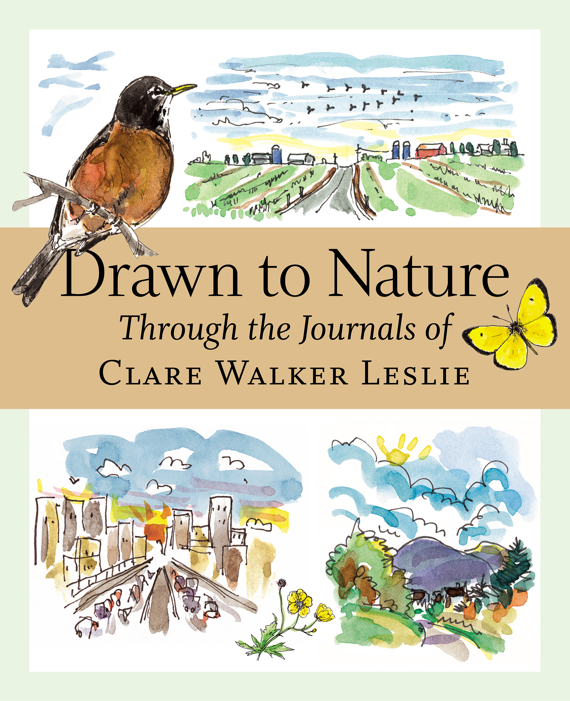 Drawn to Nature Through the Journals of Clare Walker Leslie - Clare Walker Leslie