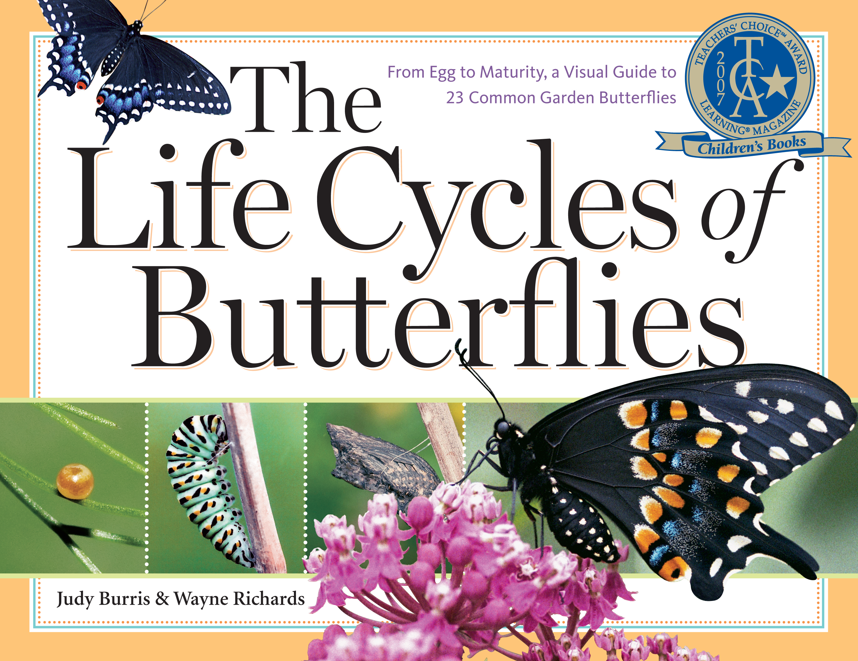 The Life Cycles of Butterflies From Egg to Maturity, a Visual Guide to 23 Common Garden Butterflies - Judy Burris