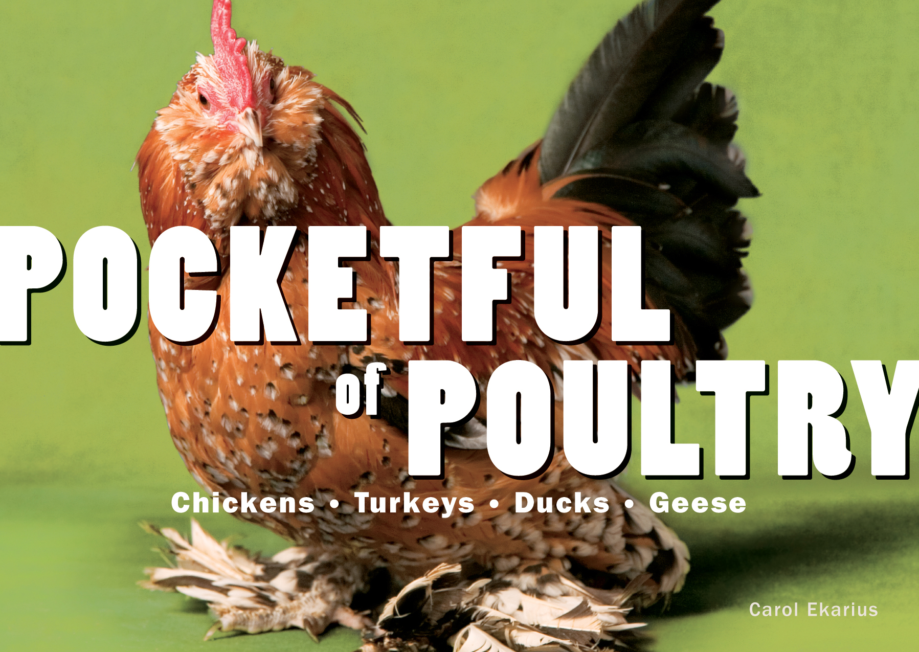Pocketful of Poultry  - Carol Ekarius