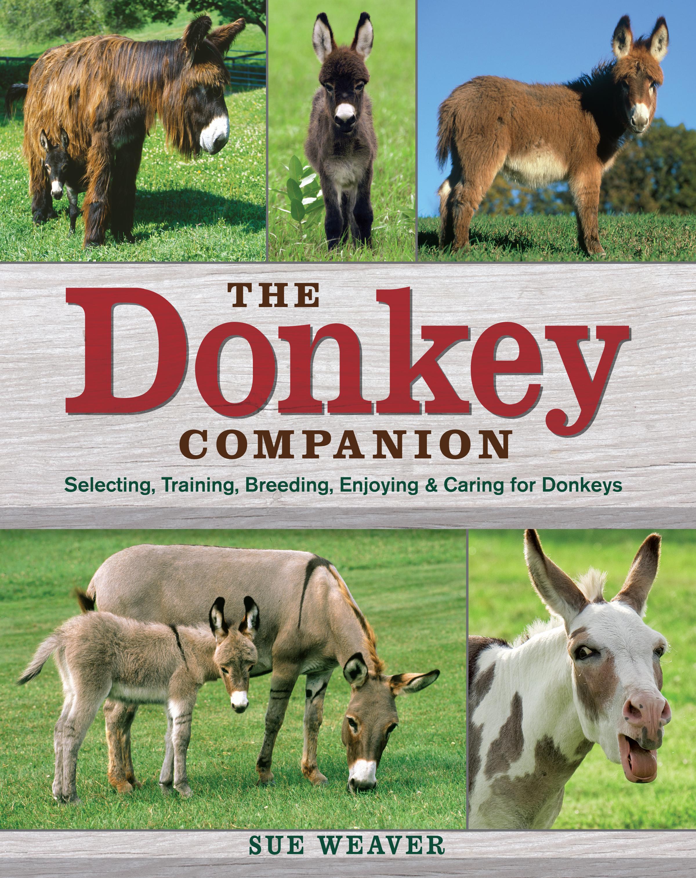 The Donkey Companion Selecting, Training, Breeding, Enjoying & Caring for Donkeys - Sue Weaver