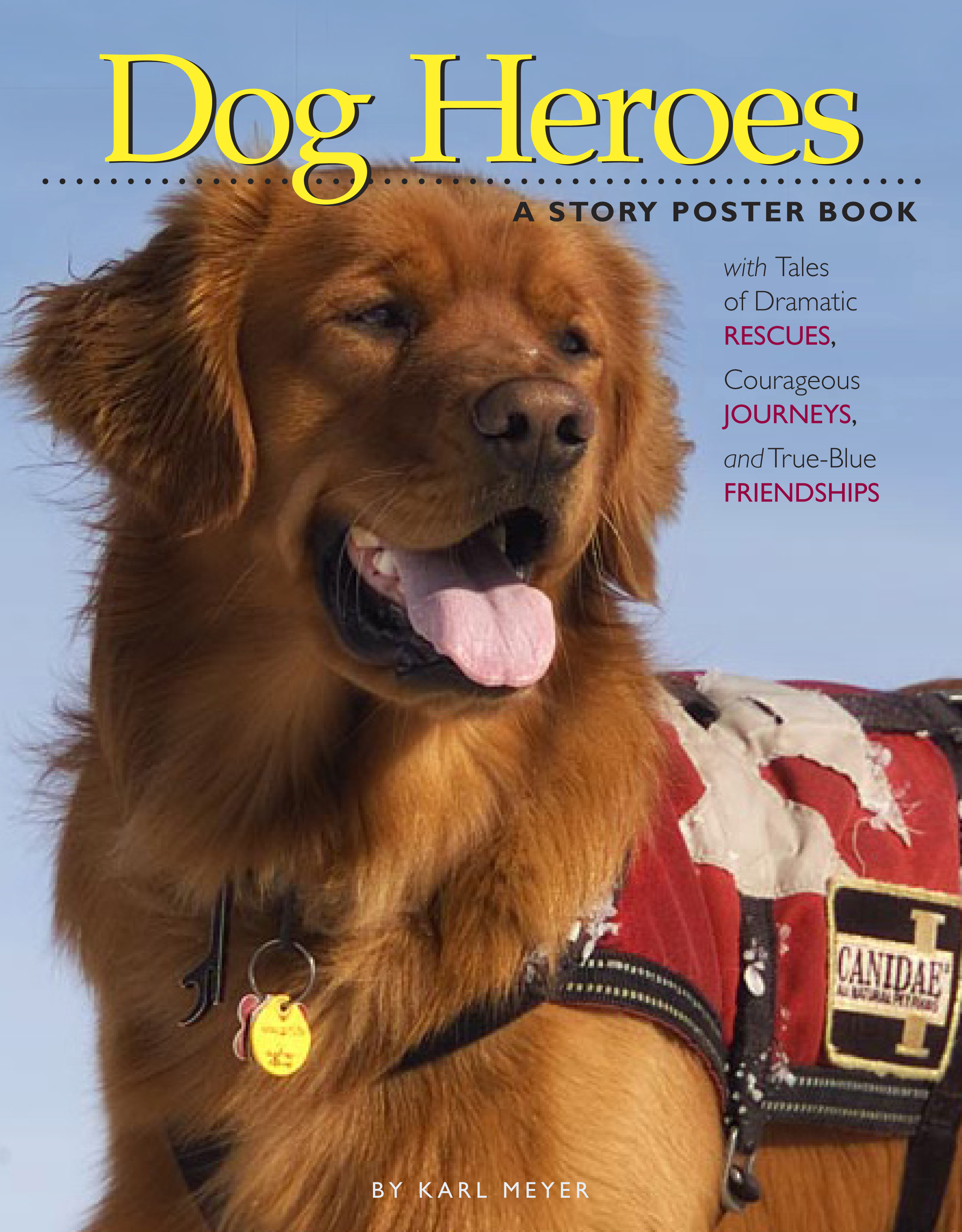 Dog Heroes A Story Poster Book - Karl Meyer