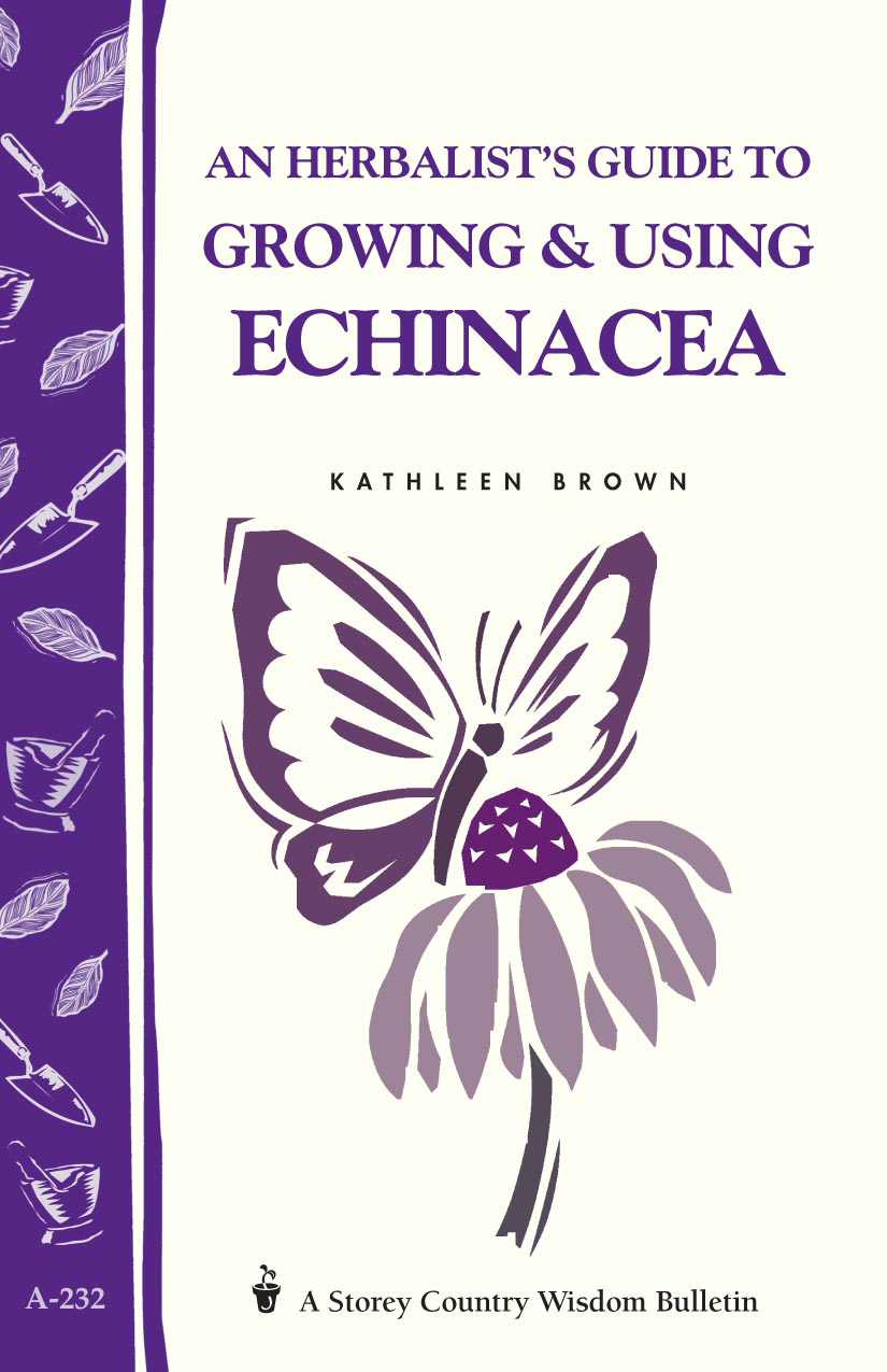 An Herbalist's Guide to Growing & Using Echinacea A Storey Country Wisdom Bulletin - Kathleen Brown