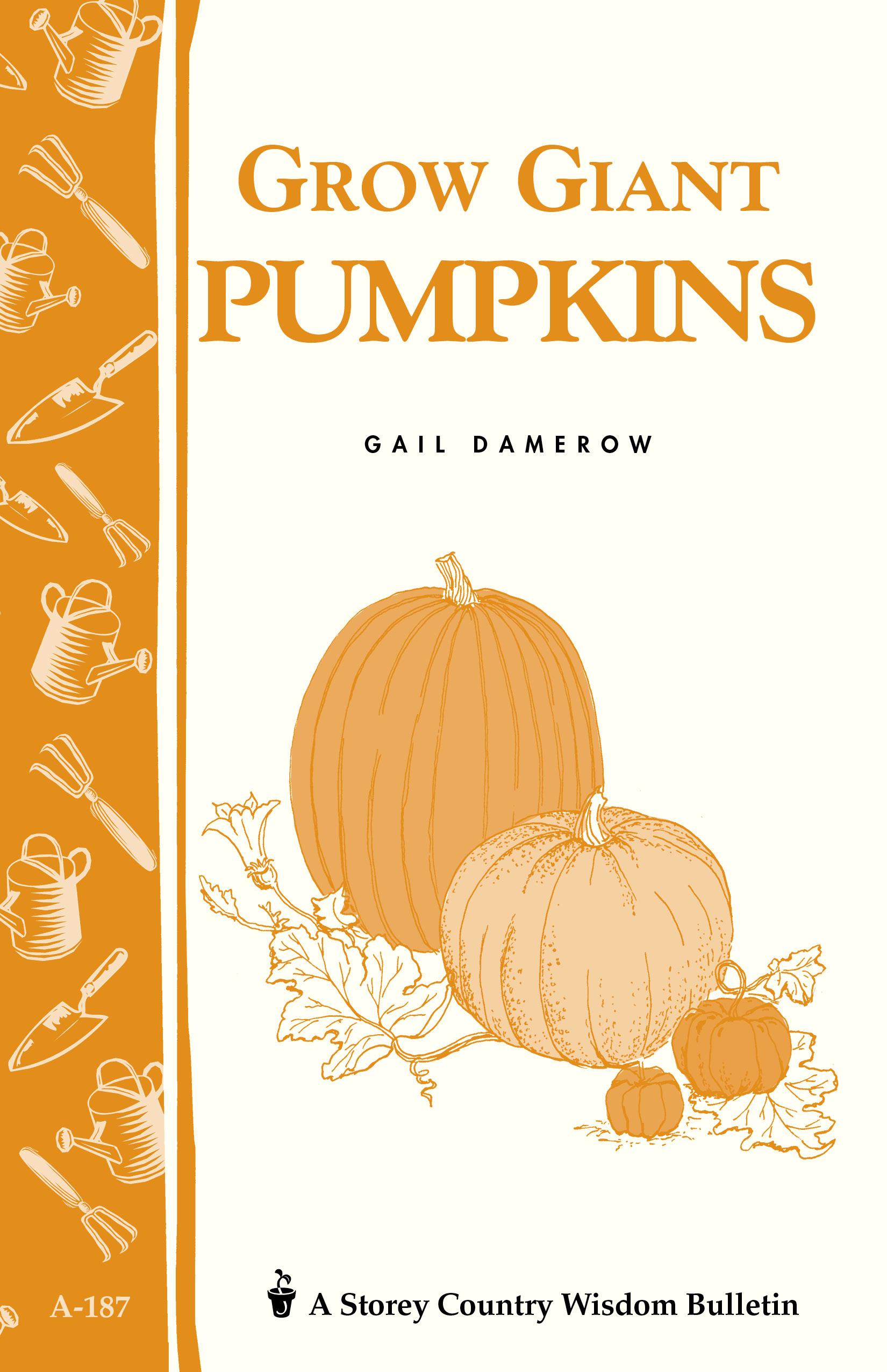 Grow Giant Pumpkins Storey's Country Wisdom Bulletin A-187 - Gail Damerow