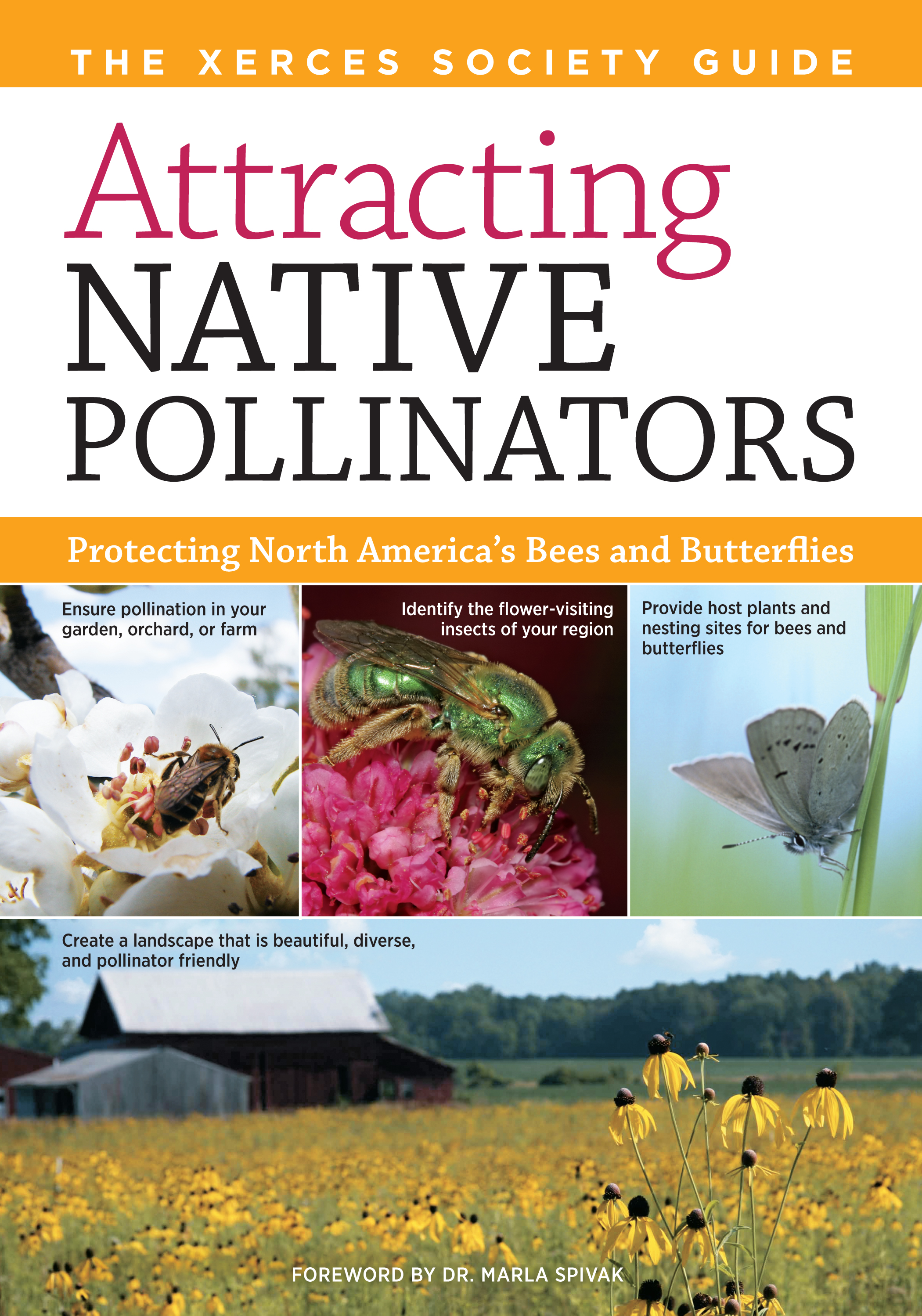 Attracting Native Pollinators The Xerces Society Guide to Conserving North American Bees and Butterflies and Their Habitat - The Xerces Society