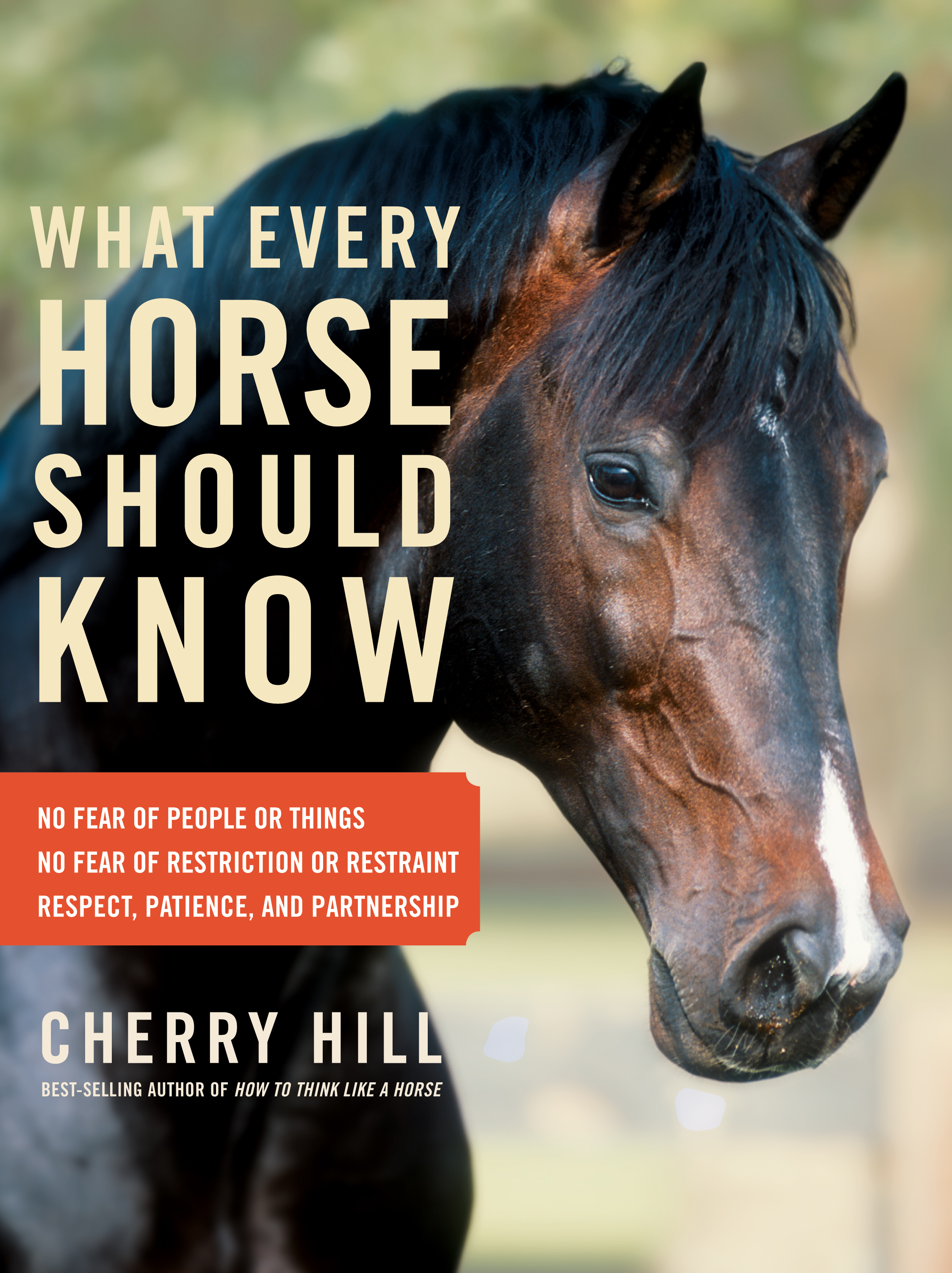 What Every Horse Should Know A Training Guide to Developing a Confident and Safe Horse - Cherry Hill