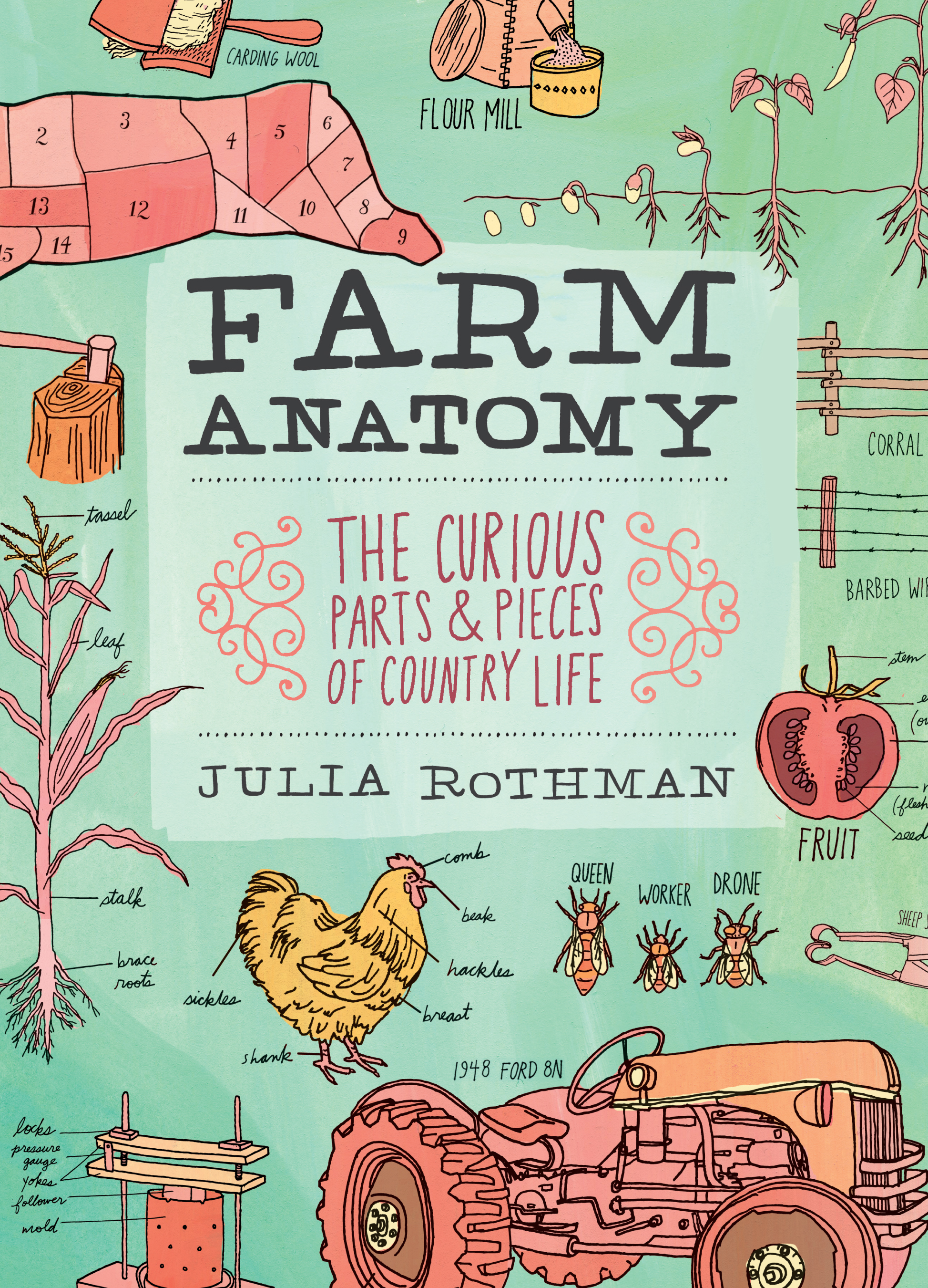 Farm Anatomy The Curious Parts and Pieces of Country Life - Julia Rothman