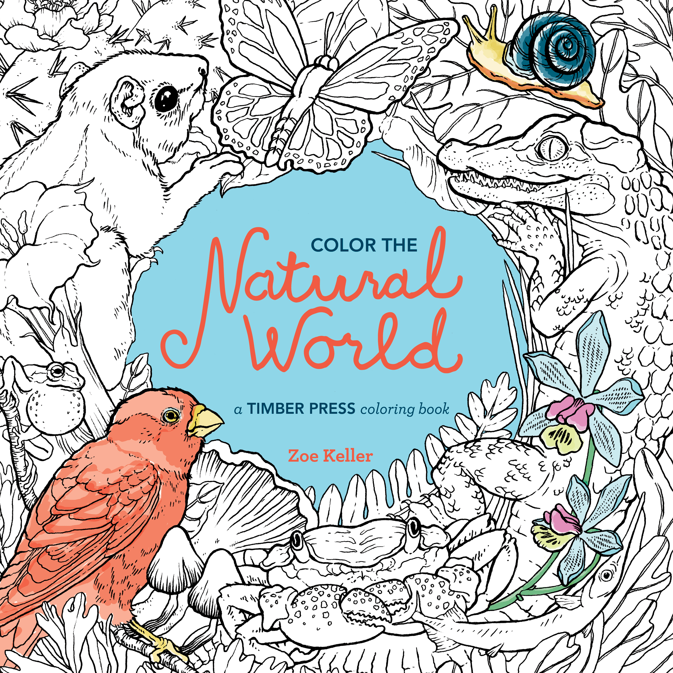 Color the Natural World - Workman Publishing