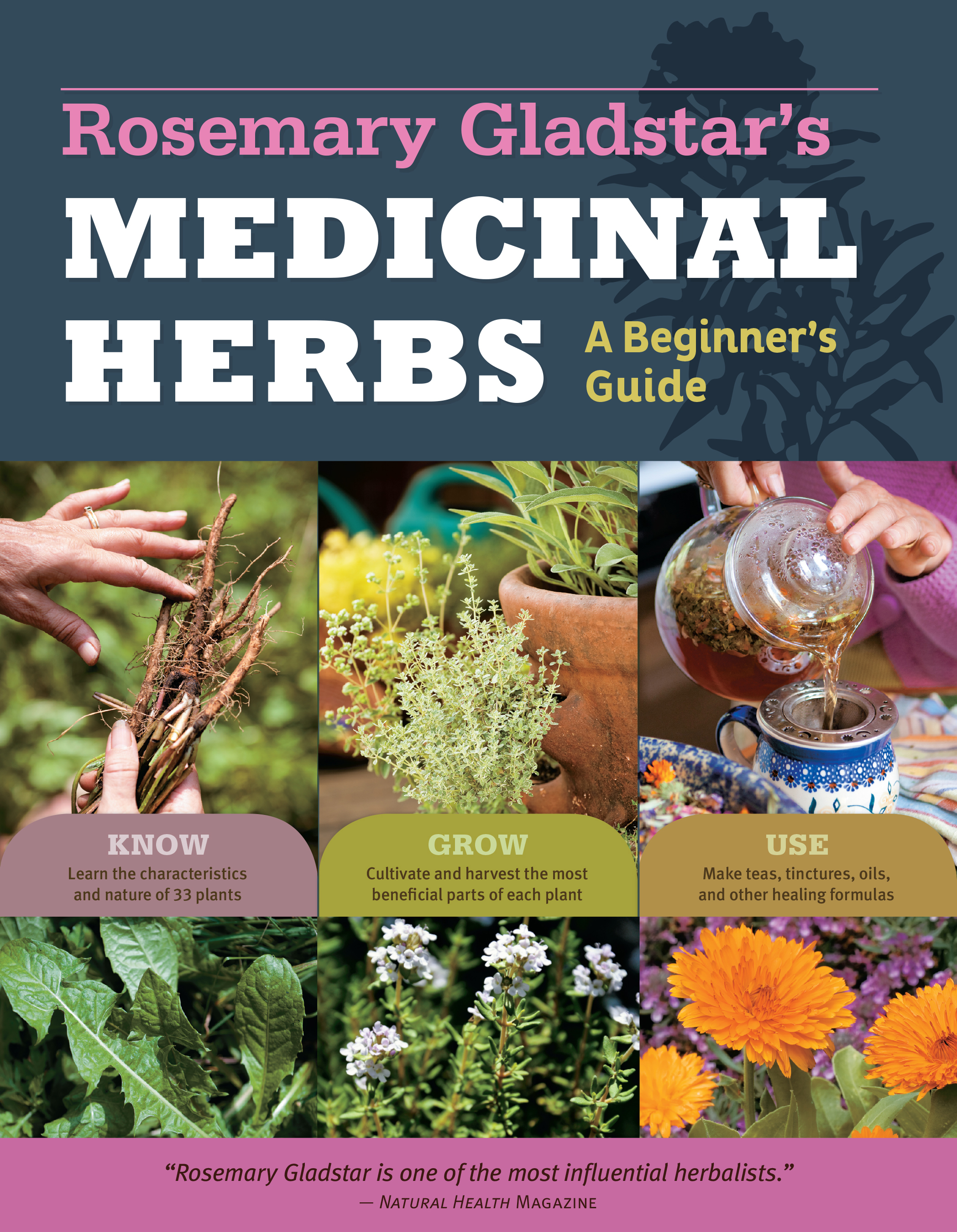 Rosemary Gladstar's Medicinal Herbs: A Beginner's Guide 33 Healing Herbs to Know, Grow, and Use - Rosemary Gladstar