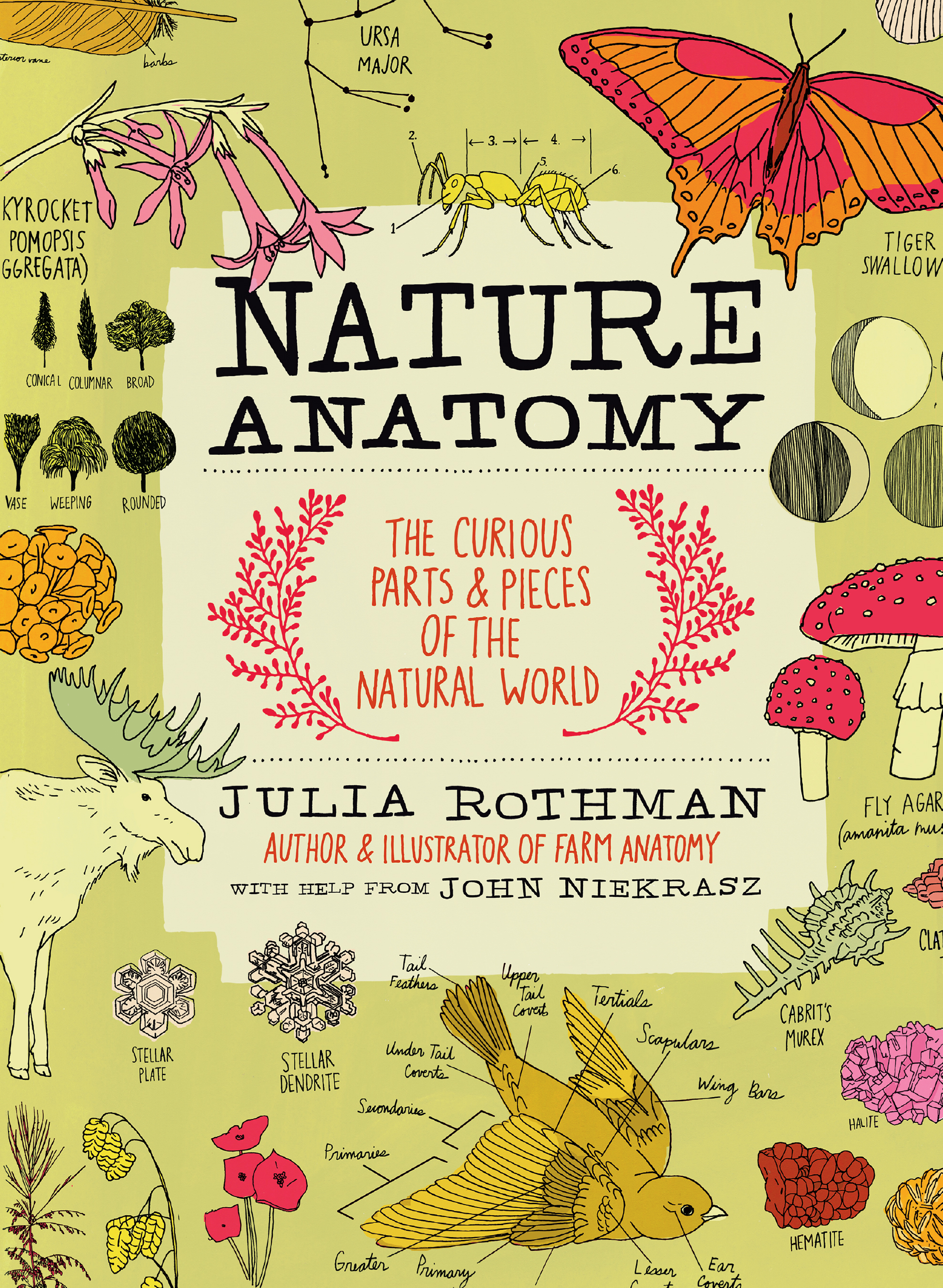 Nature Anatomy The Curious Parts and Pieces of the Natural World - Julia Rothman