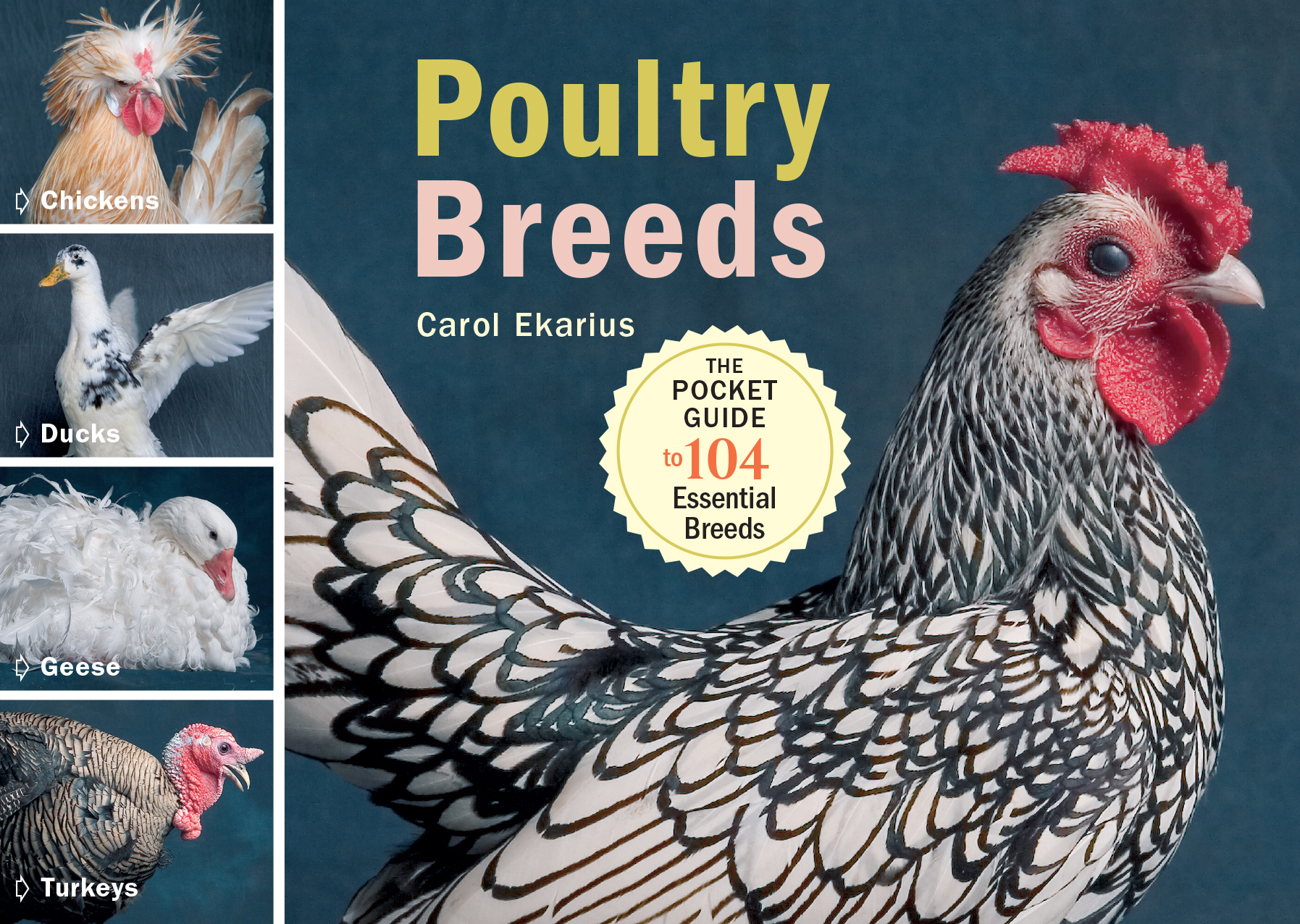 Poultry Breeds Chickens, Ducks, Geese, Turkeys: The Pocket Guide to 104 Essential Breeds - Carol Ekarius
