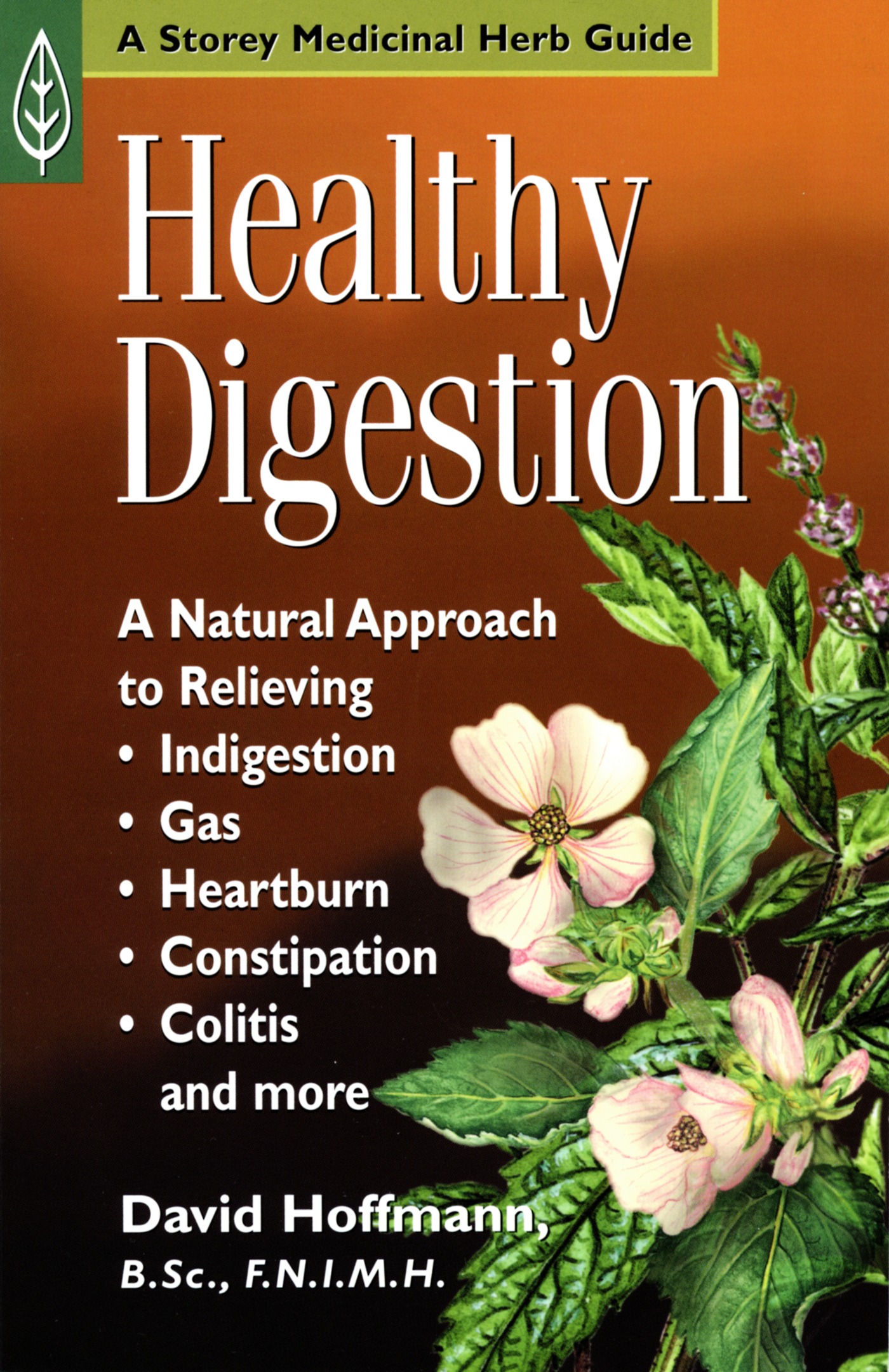 Healthy Digestion A Natural Approach to Relieving Indigestion, Gas, Heartburn, Constipation, Colitis, and More - David Hoffmann