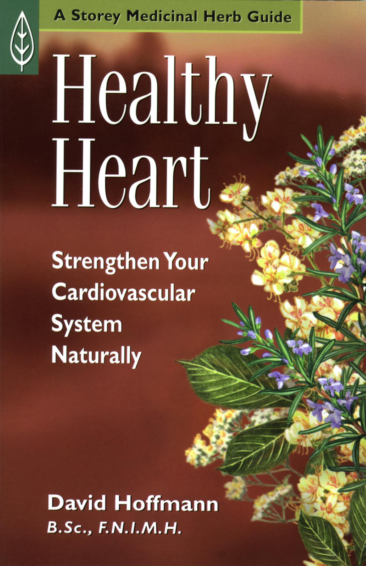 Healthy Heart Strengthen Your Cardiovascular System Naturally - David Hoffmann