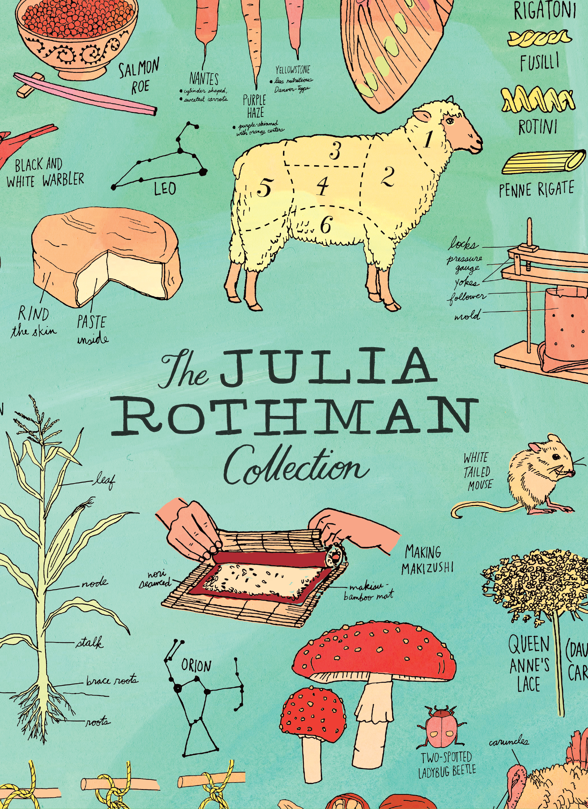The Julia Rothman Collection Farm Anatomy, Nature Anatomy, and Food Anatomy - Julia Rothman