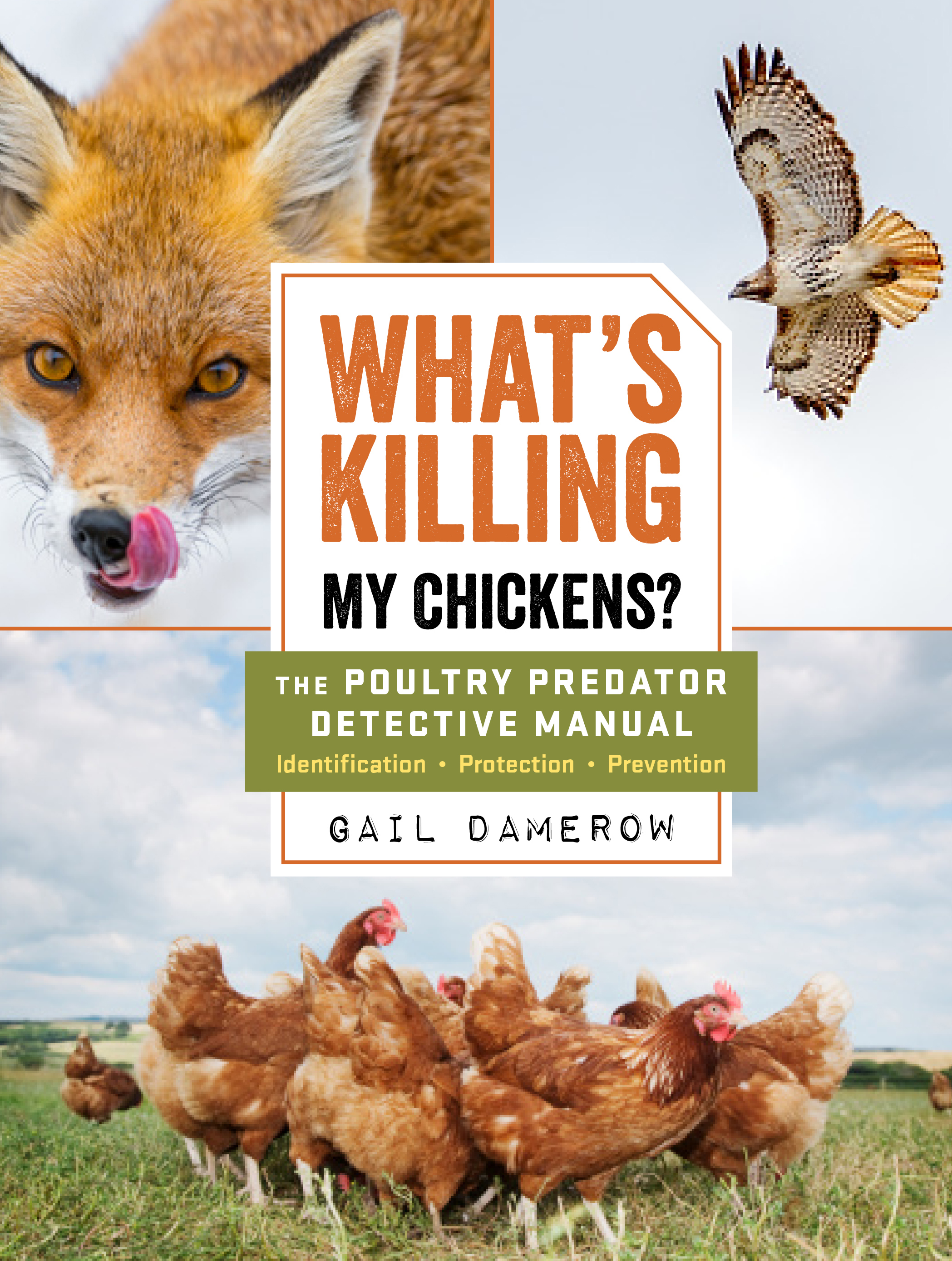 What's Killing My Chickens? The Poultry Predator Detective Manual - Gail Damerow