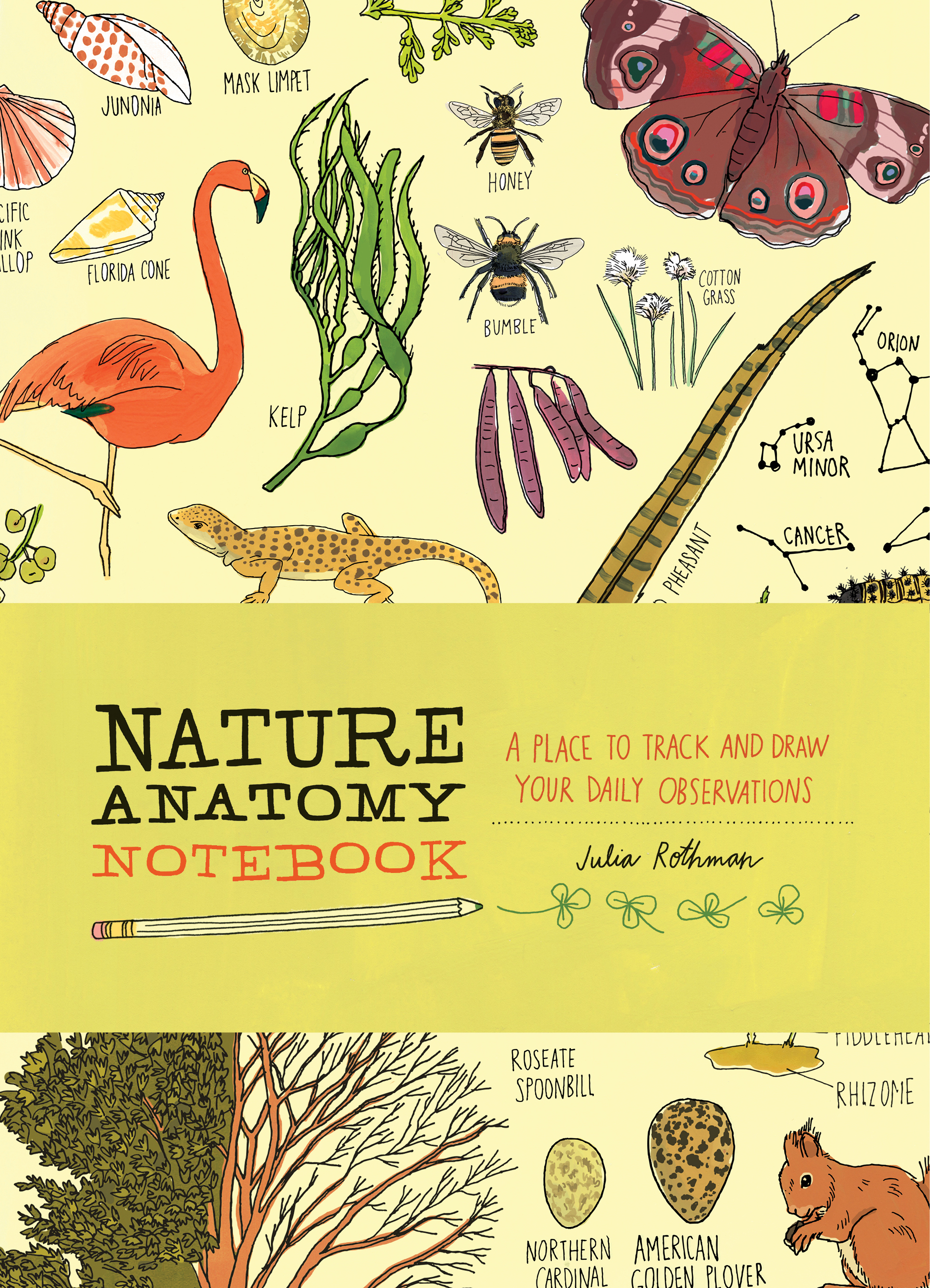 Nature Anatomy Notebook A Place to Track and Draw Your Daily Observations - Julia Rothman