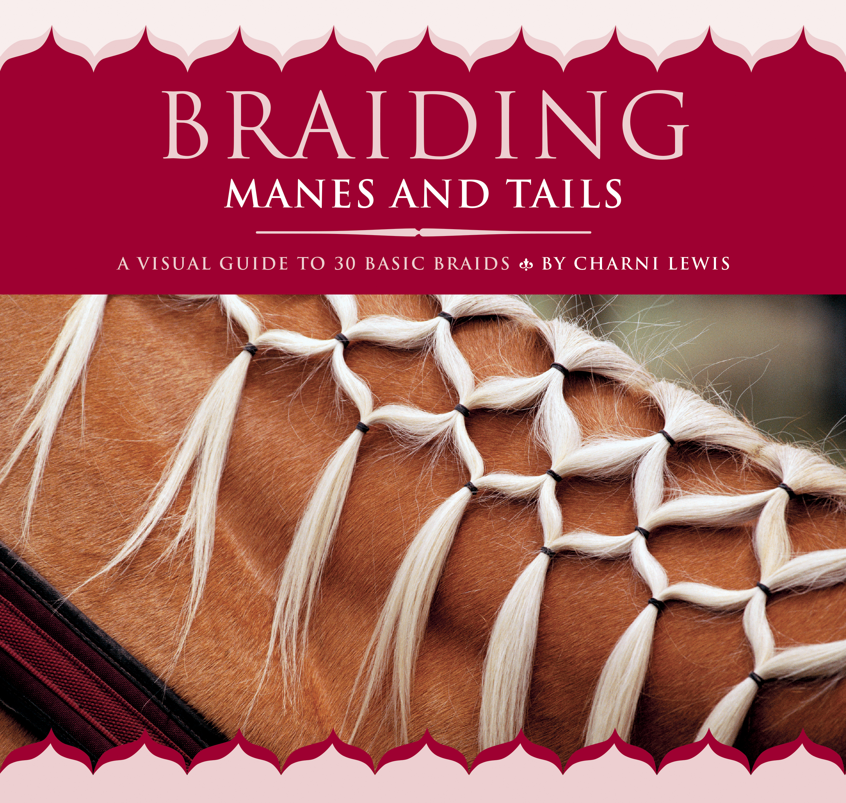 Braiding Manes and Tails A Visual Guide to 30 Basic Braids - Charni Lewis