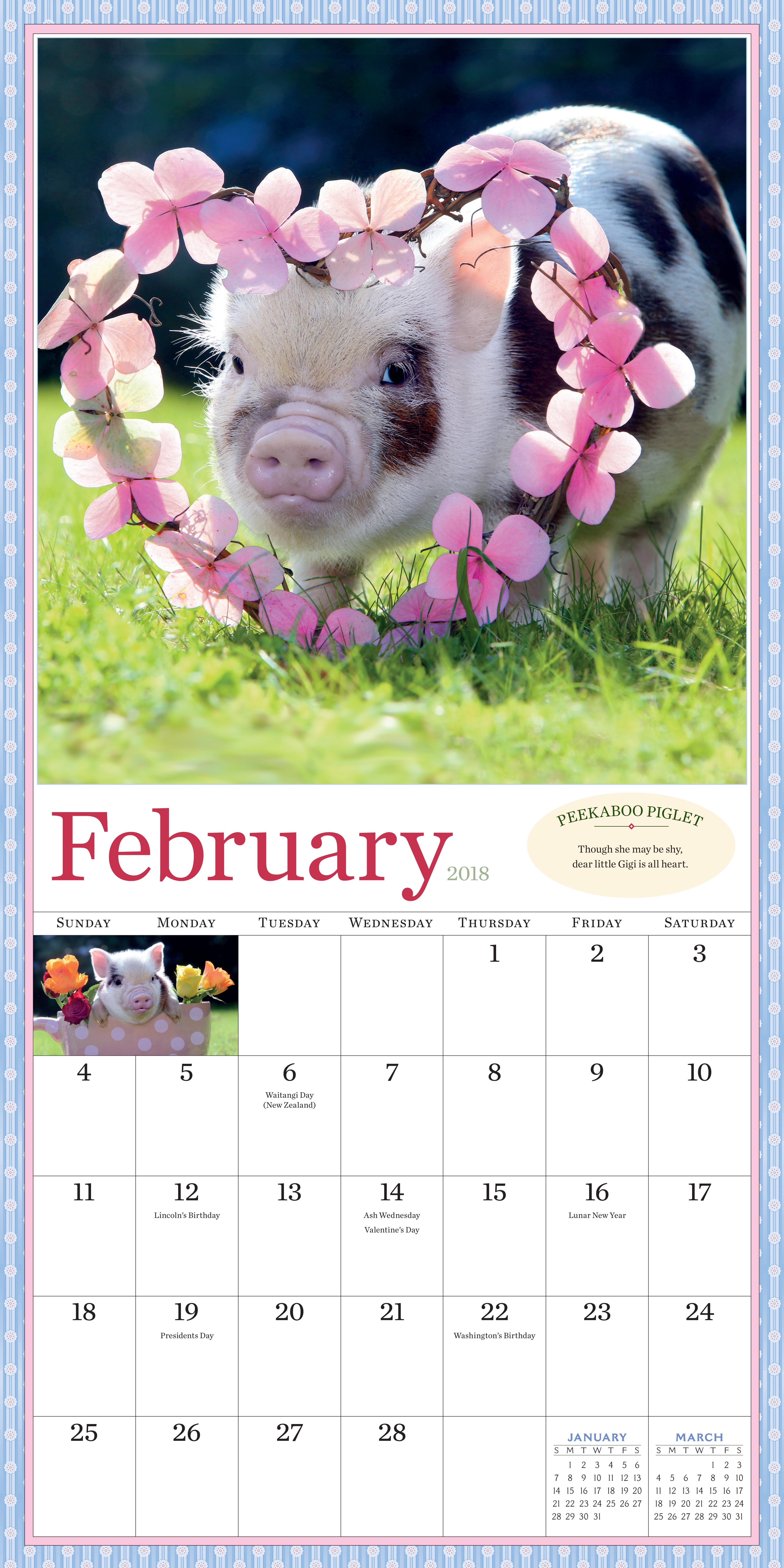 Pocket pigs wall calendar 2018 workman publishing download high res image voltagebd Gallery