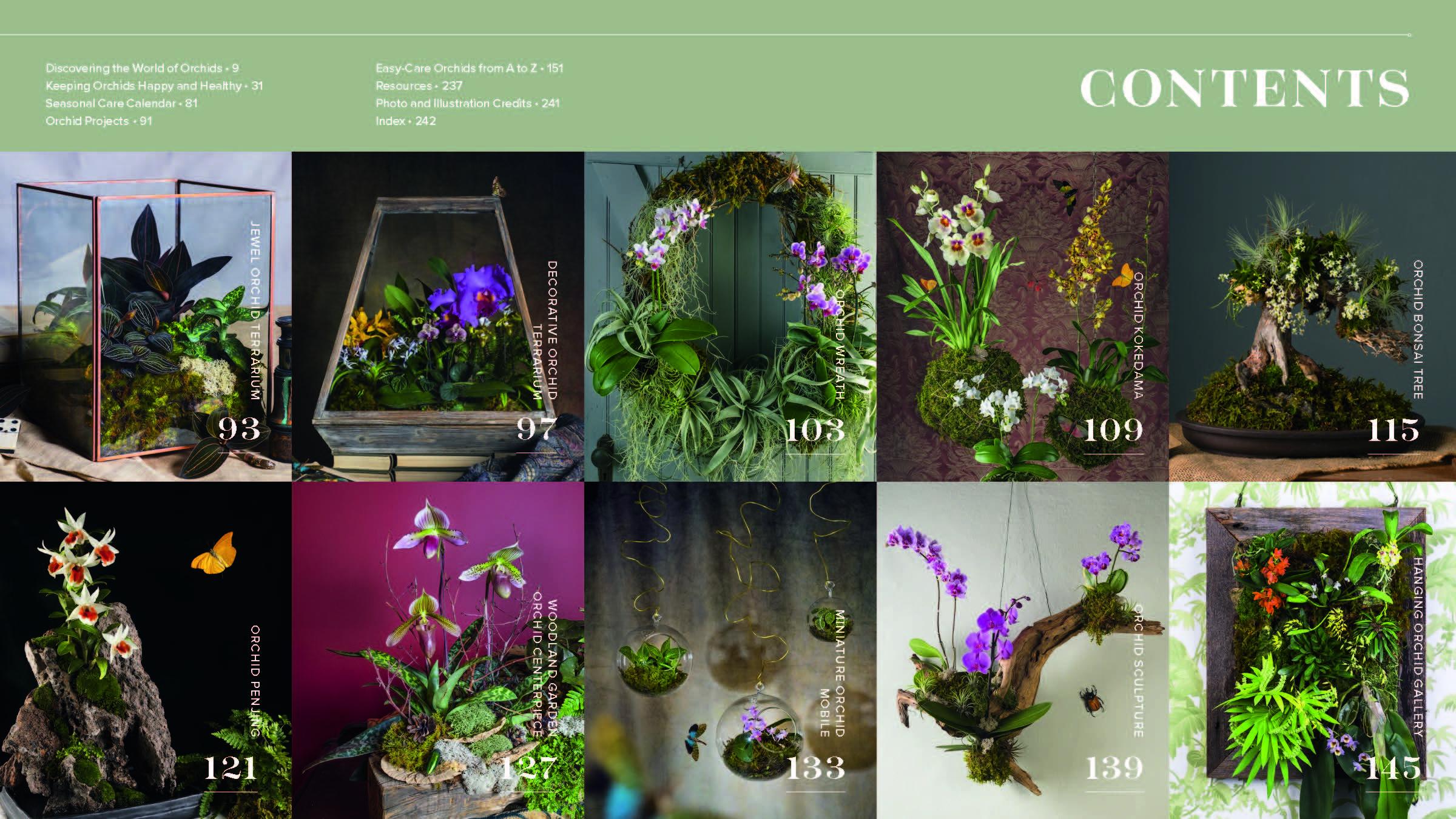 Orchid Modern Workman Publishing