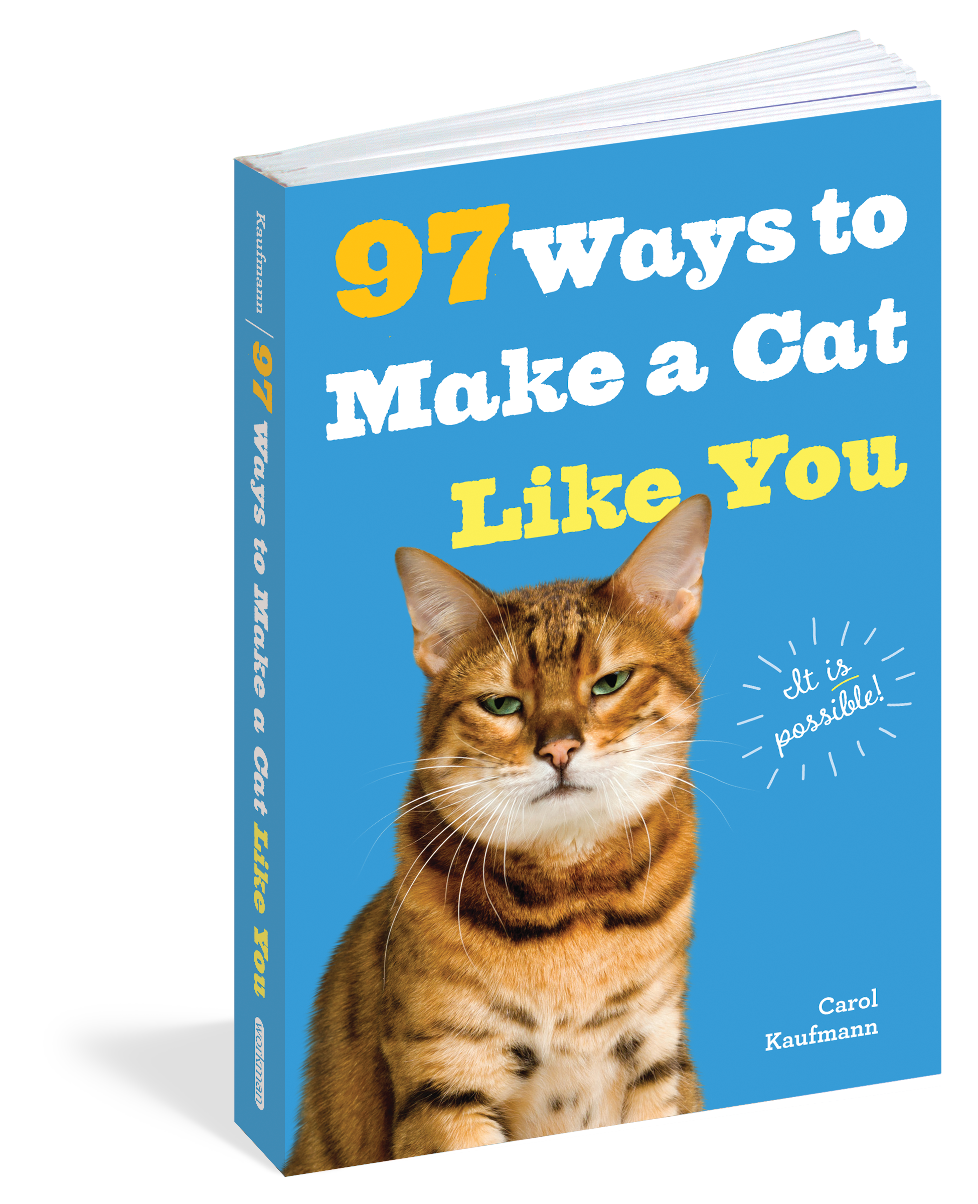 97 Ways to Make a Cat Like You Workman Publishing