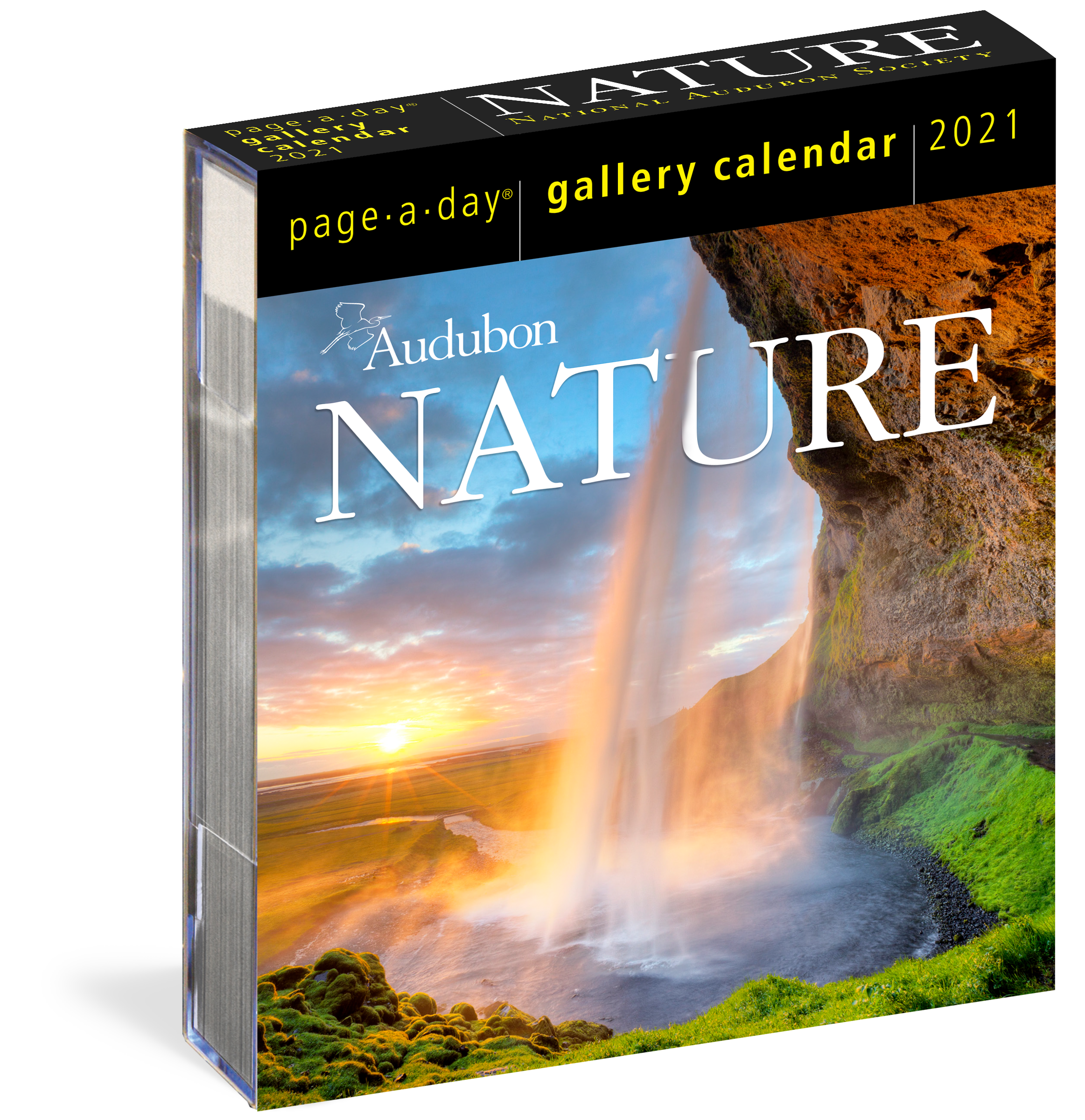 Audubon Nature Page A Day® Gallery Calendar 2021   Workman Publishing