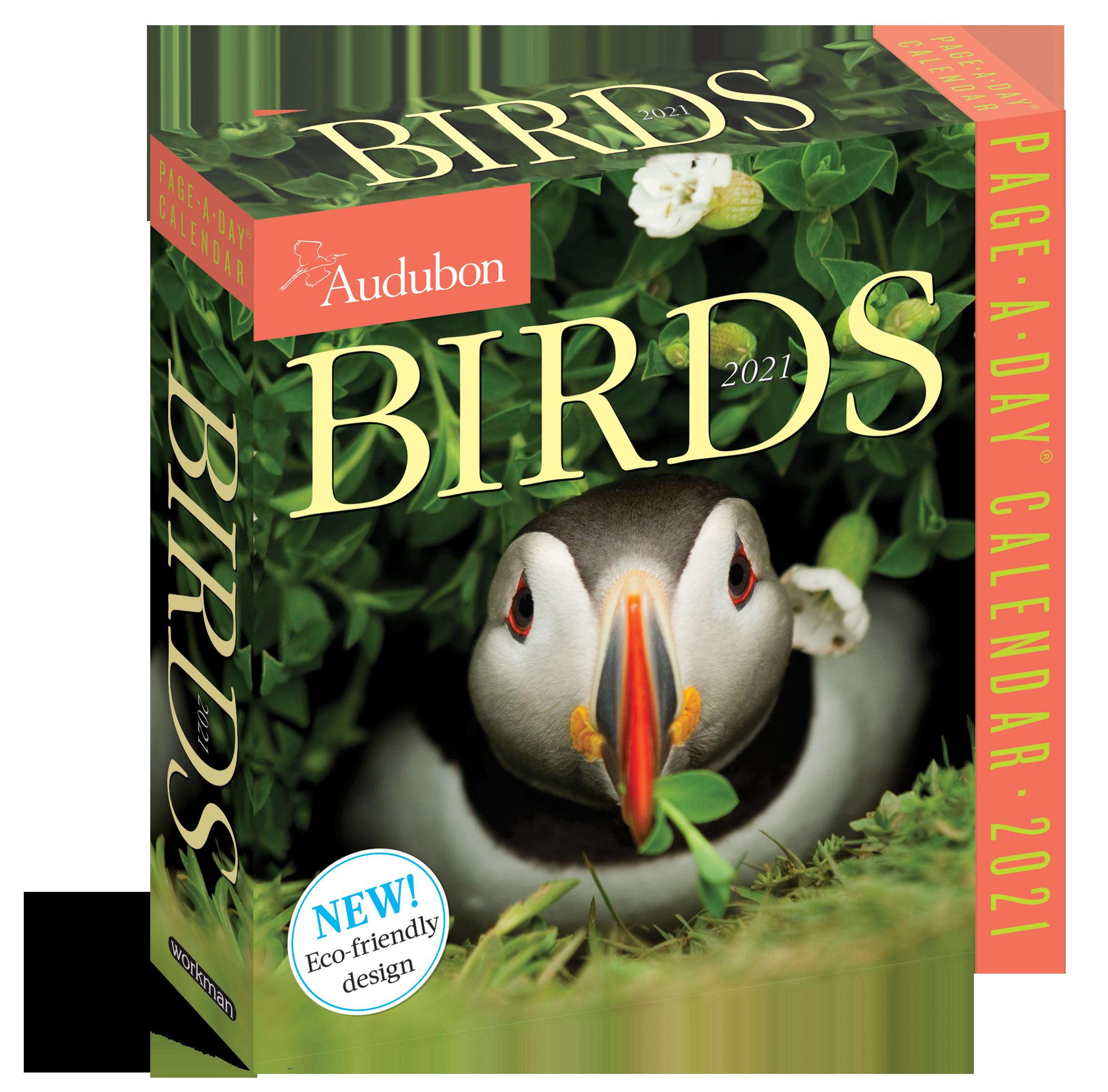 Audubon Bird Calendar 2021 Audubon Birds Page A Day Calendar 2021   Workman Publishing