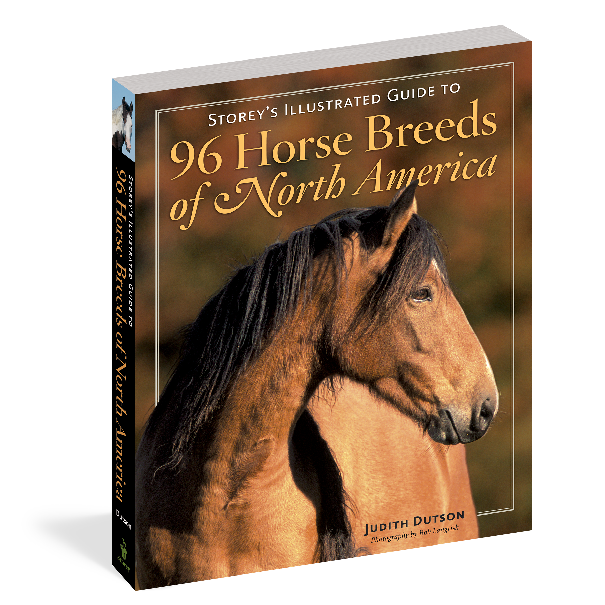 Storey S Illustrated Guide To 96 Horse Breeds Of North America Workman Publishing