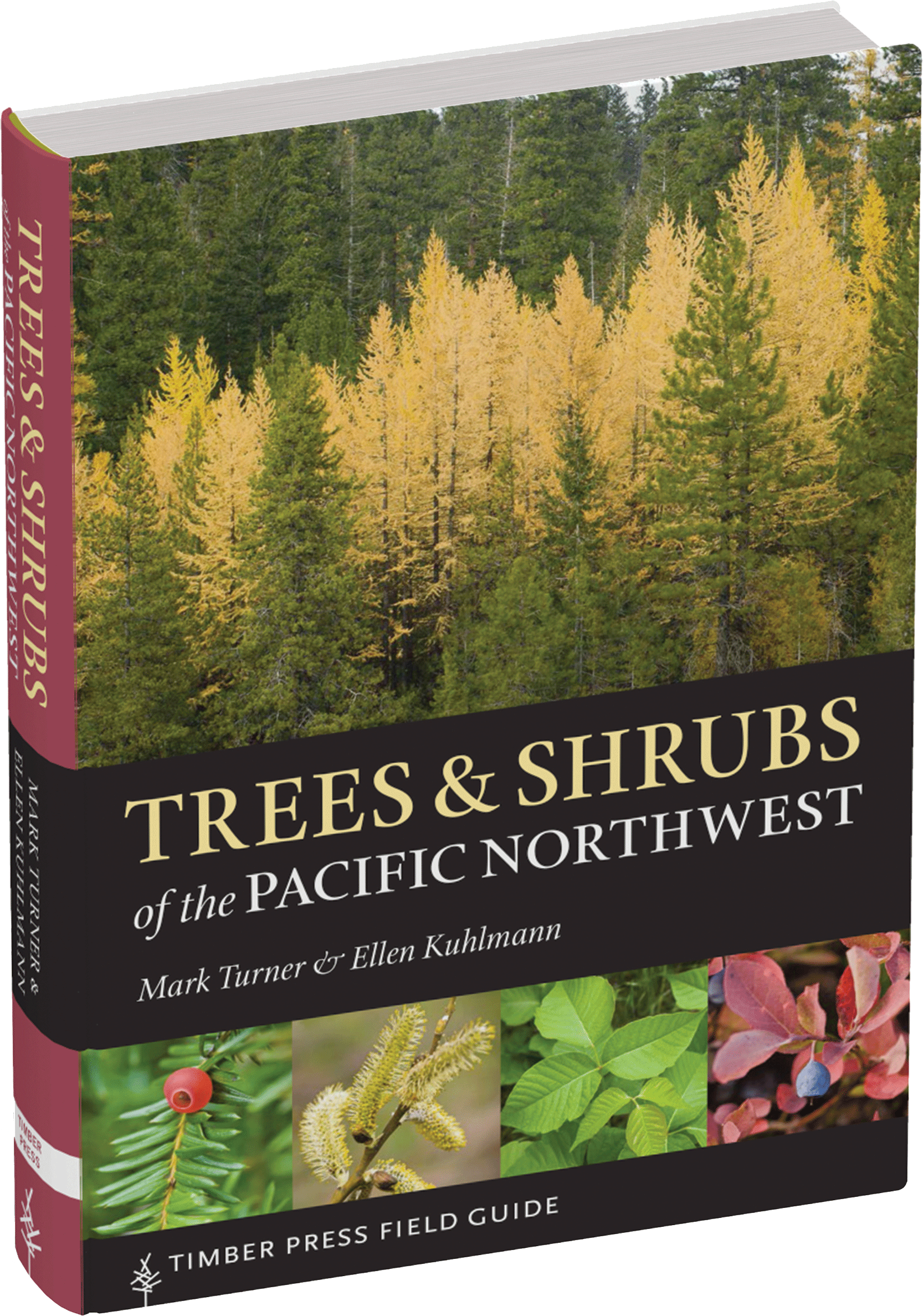 Trees And Shrubs Of The Pacific Northwest Workman Publishing