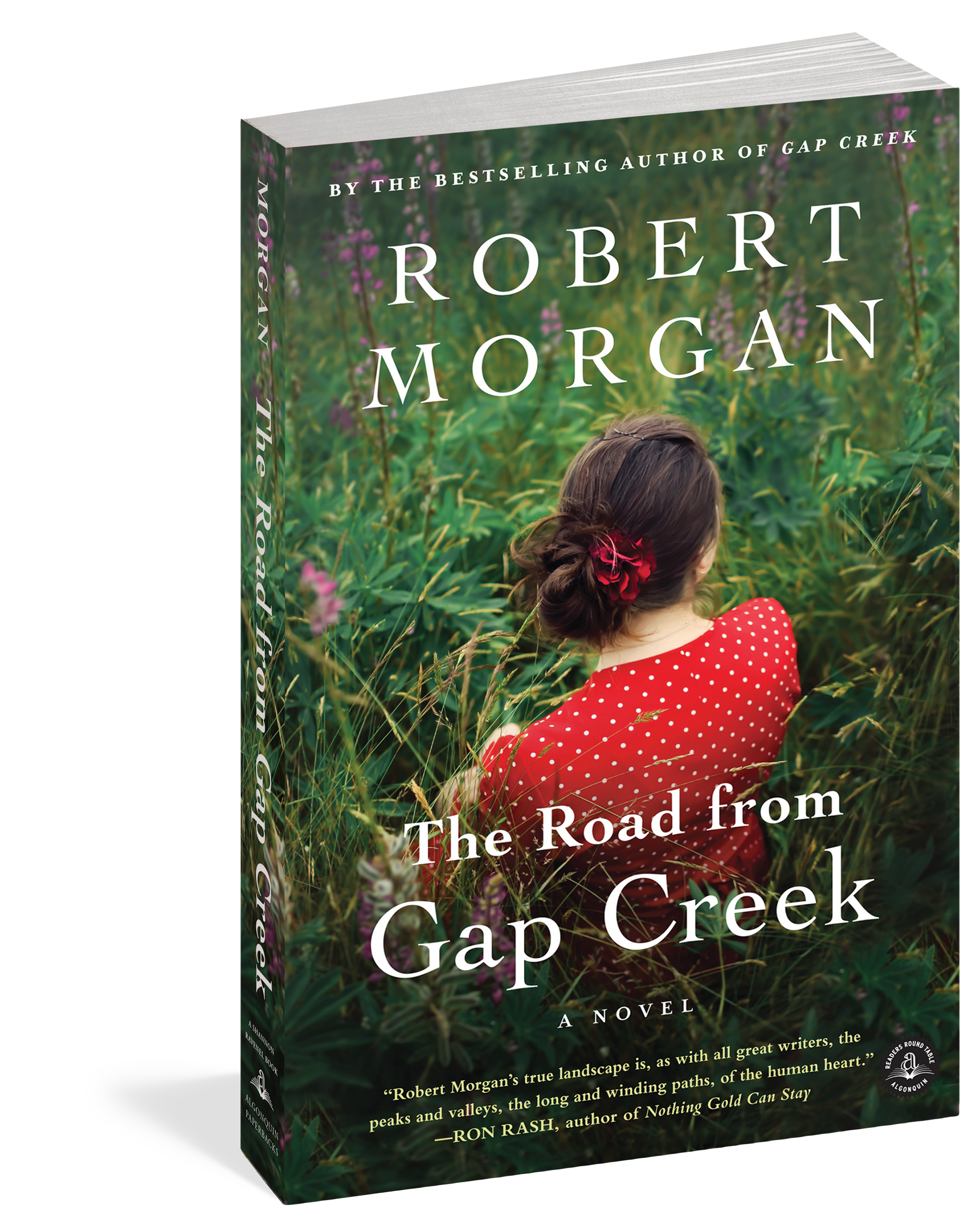 robert morgans novel essay Looking for books by robert morgan see all books authored by robert morgan, including gap creek : the story of a marriage (oprahs book club), and boone, and more on thriftbookscom.