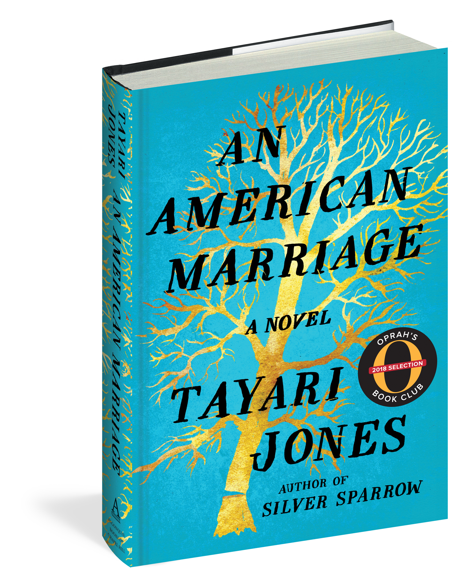 Image result for an american marriage book image